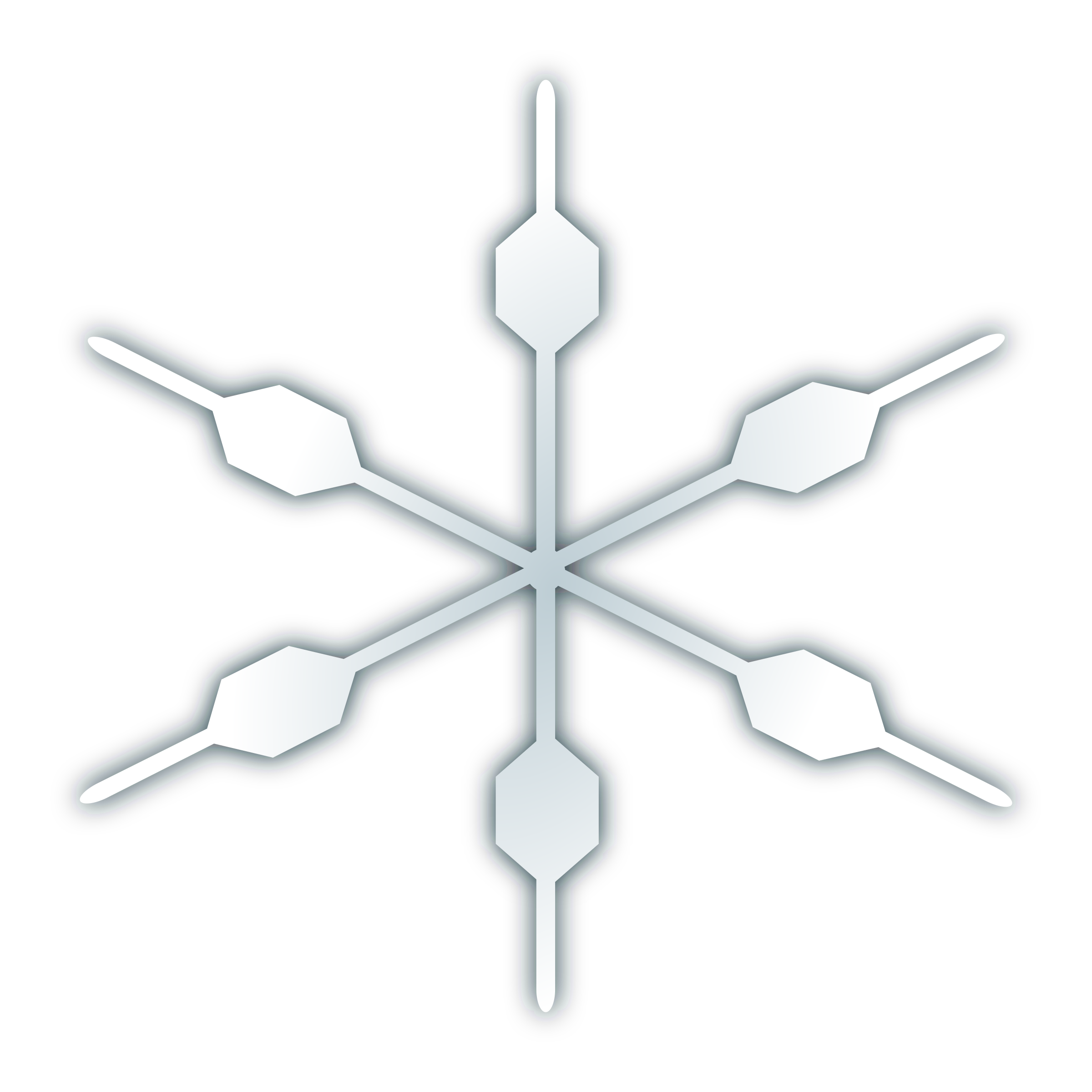 snow flake icon by netalloy