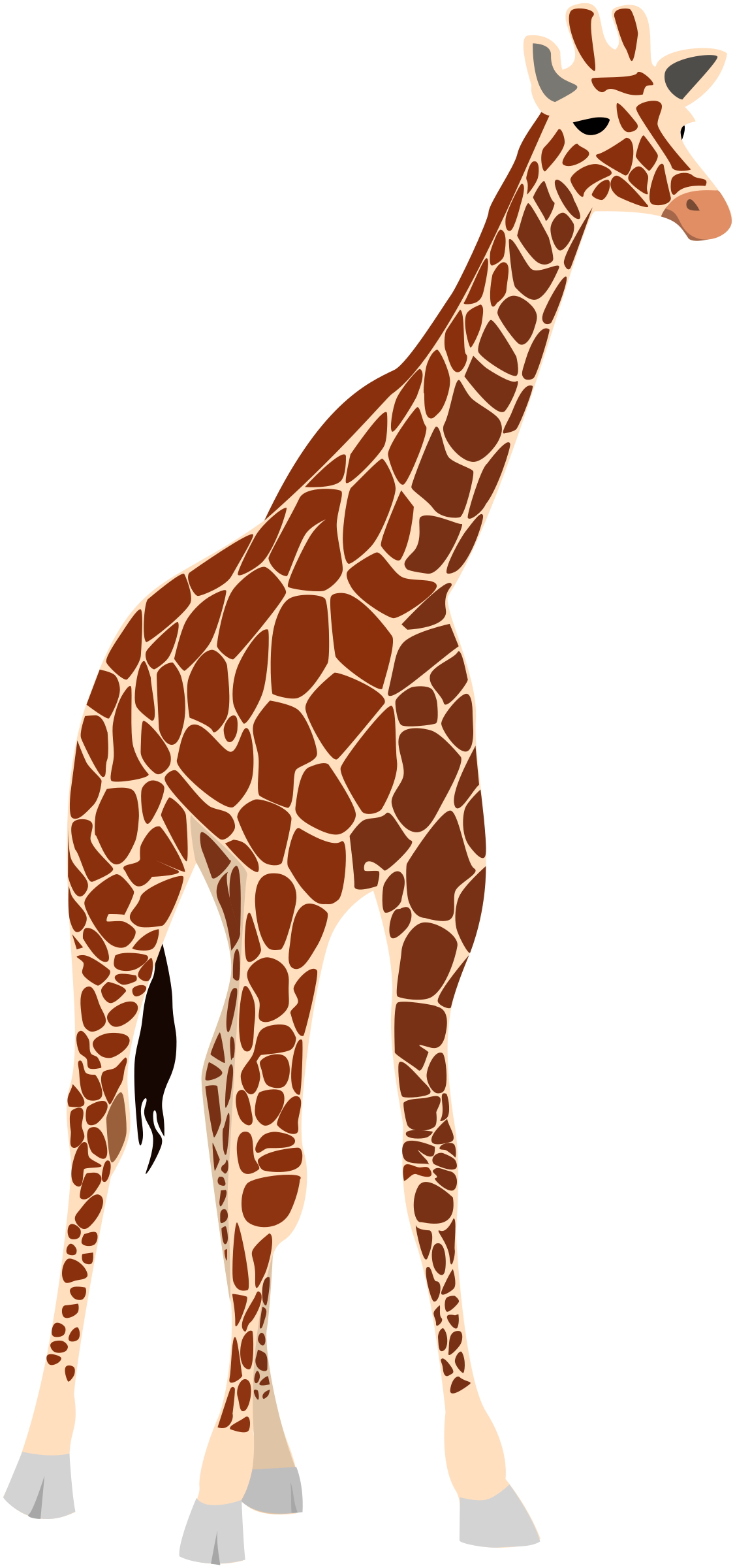 another giraffe by ha1flosse