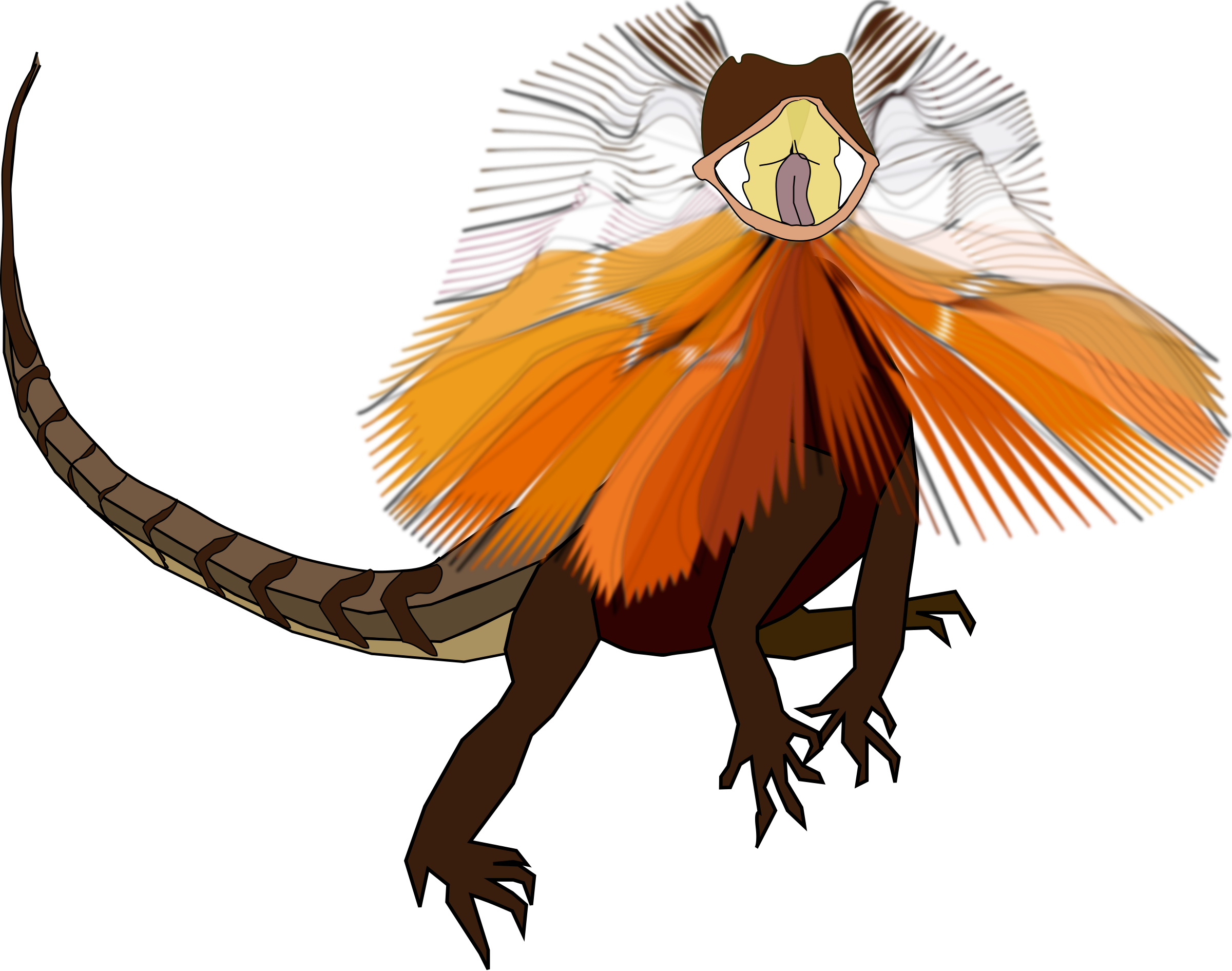 Frill-necked lizard (dragon) by worms_x