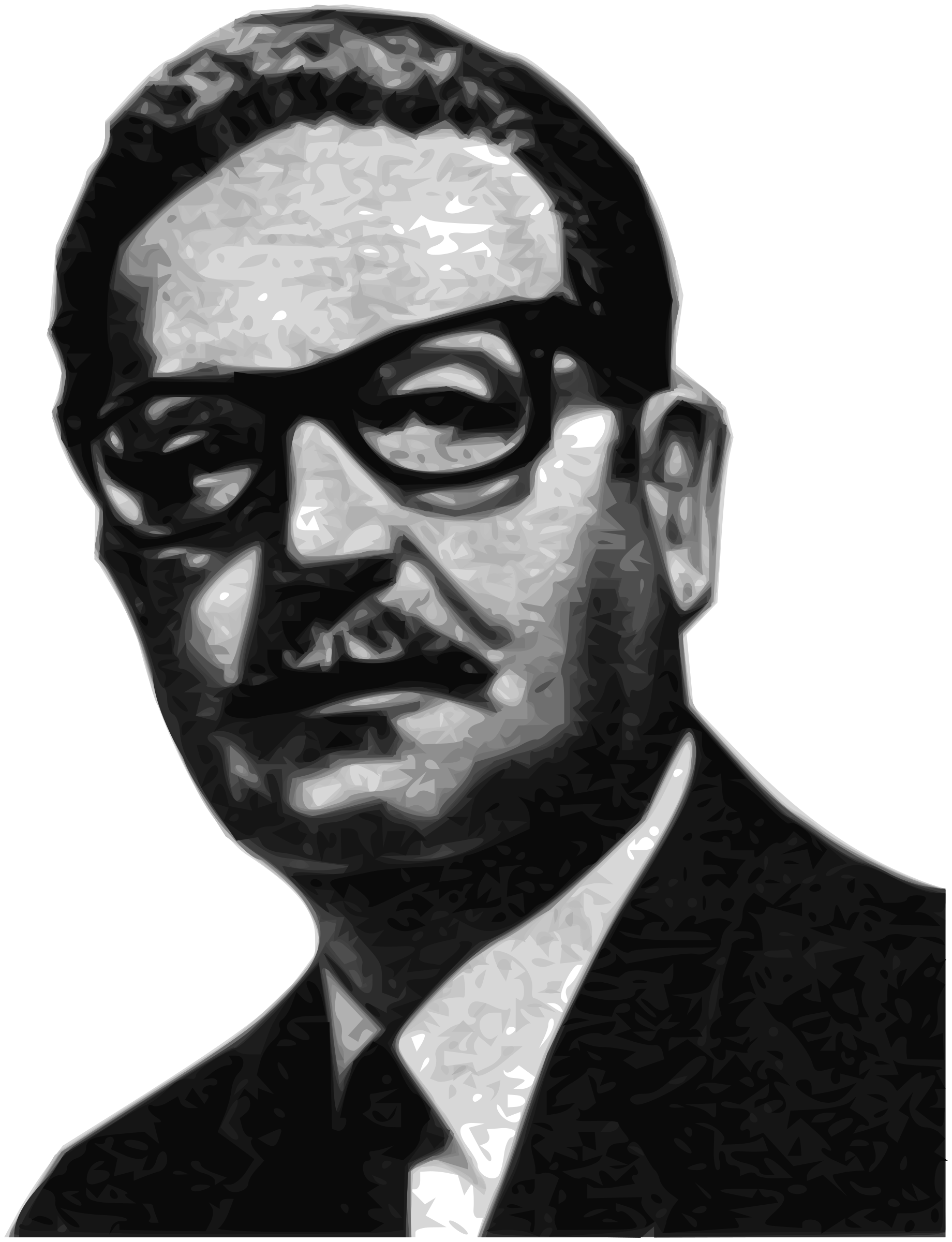 Salvador Allende Greyscale 56th President of the Senate of the Republic of Chile by Merlin2525