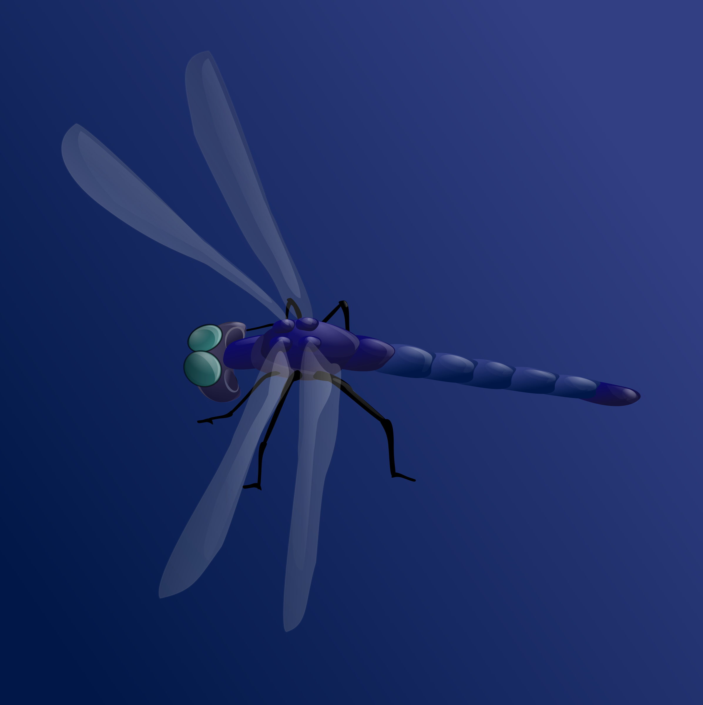 blue dragonfly by Anonymous
