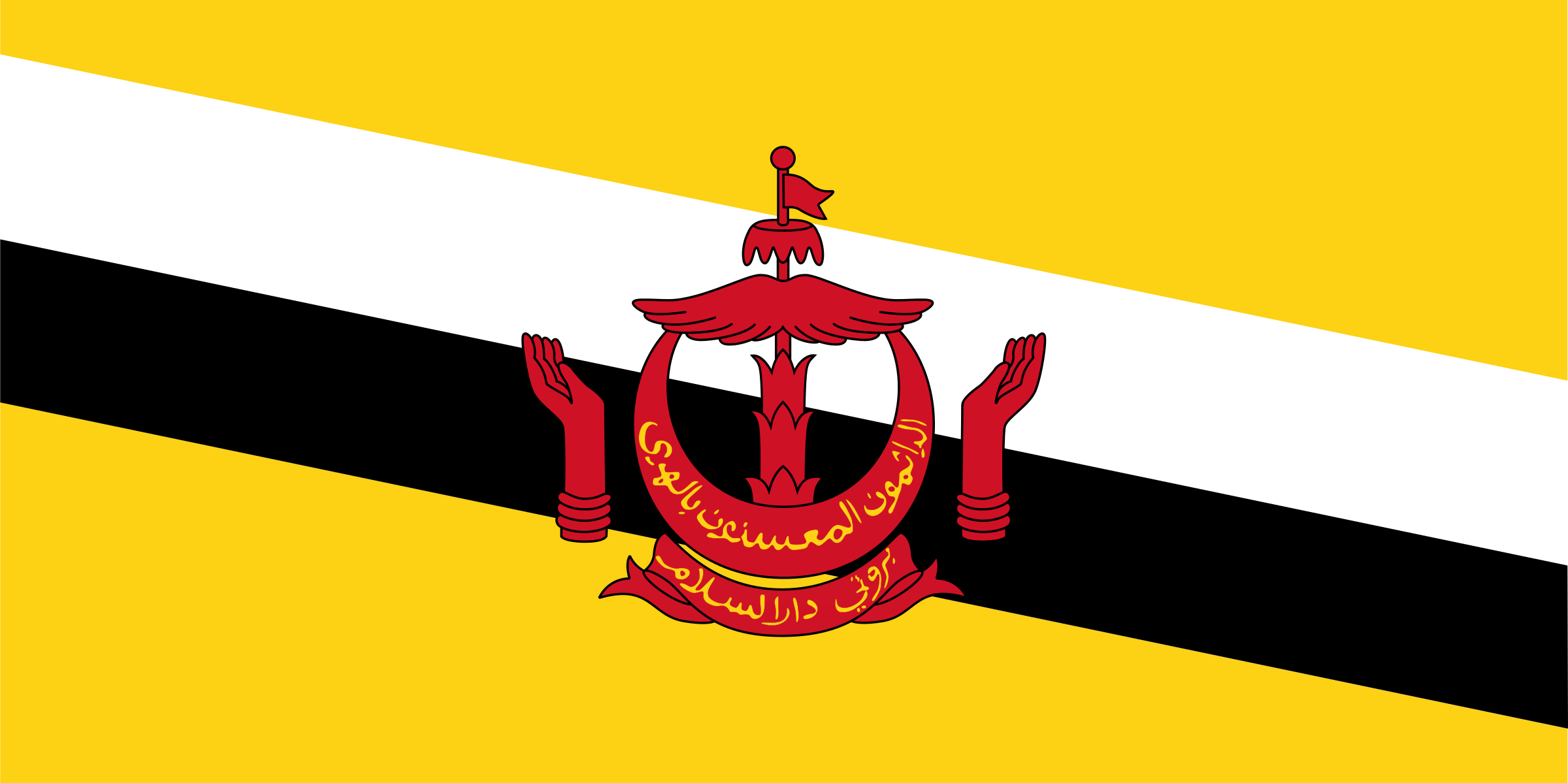 flag of Brunei Darussalam by Anonymous
