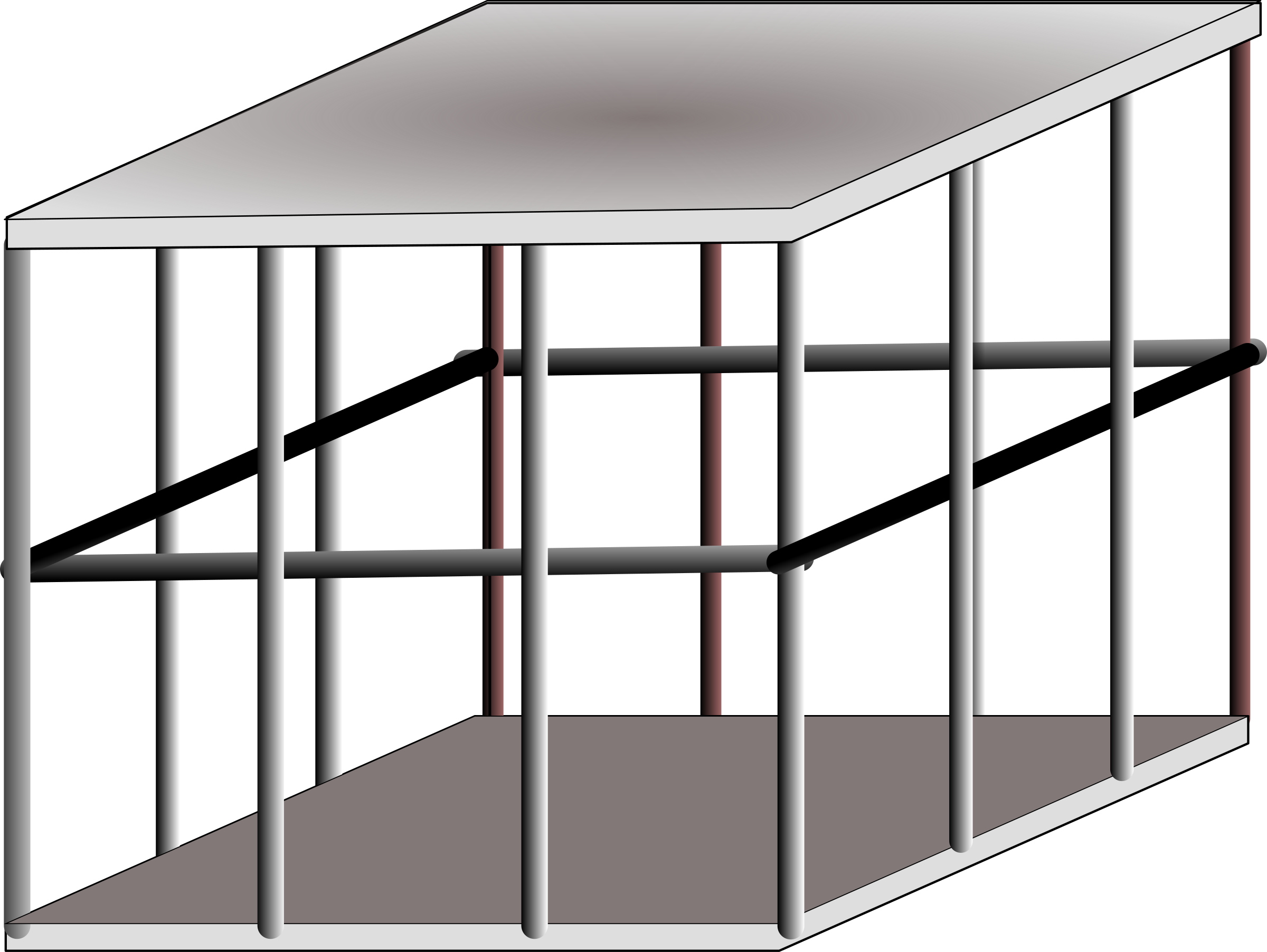 metal cage by Anonymous