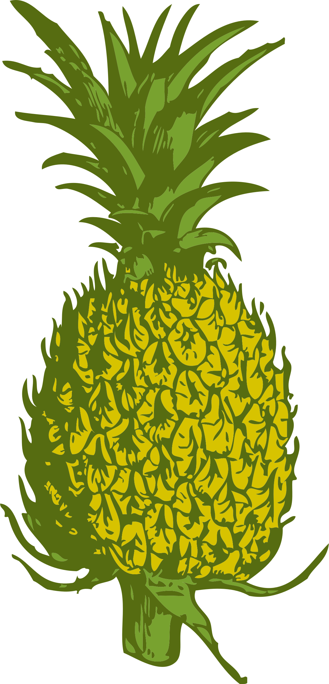 pineapple by johnny_automatic