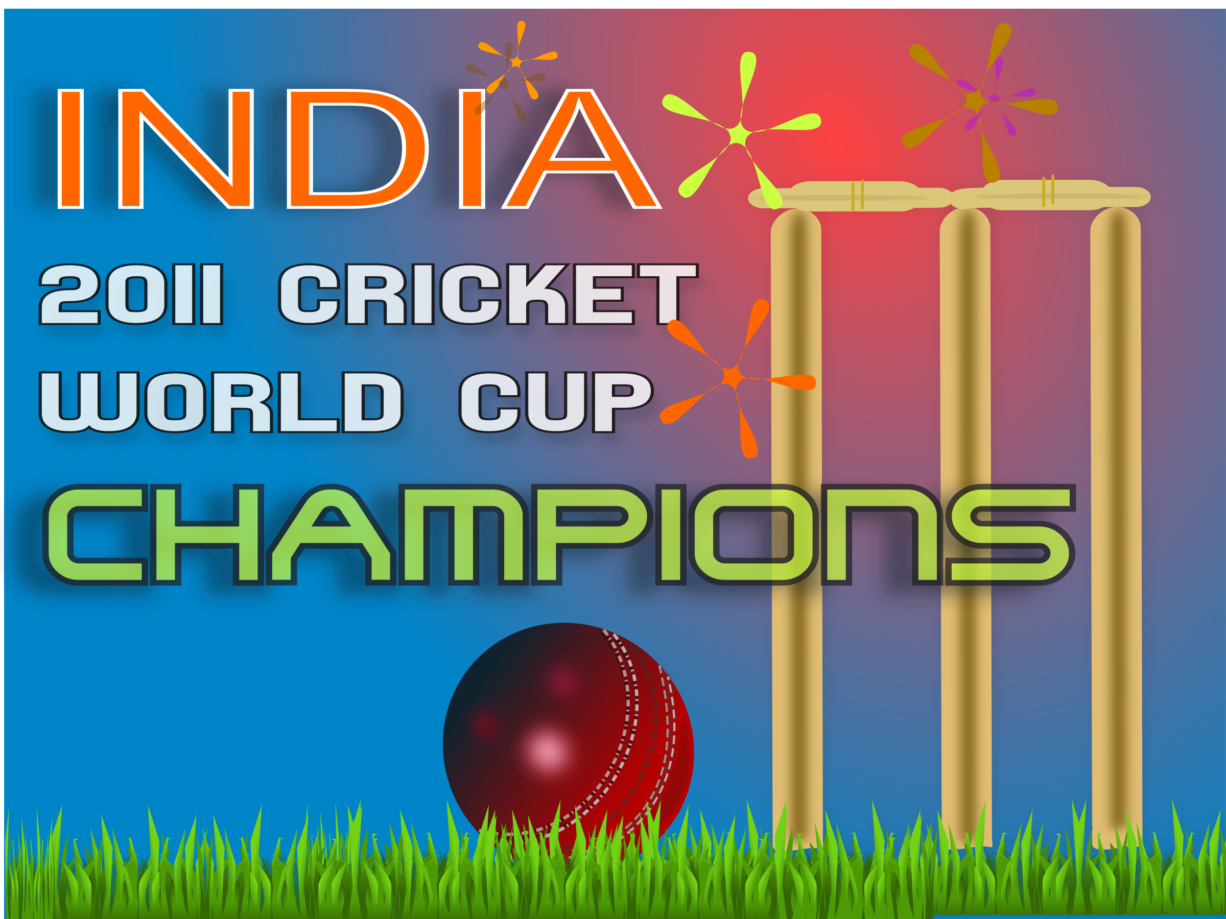 2011 cricket world cup winner by netalloy