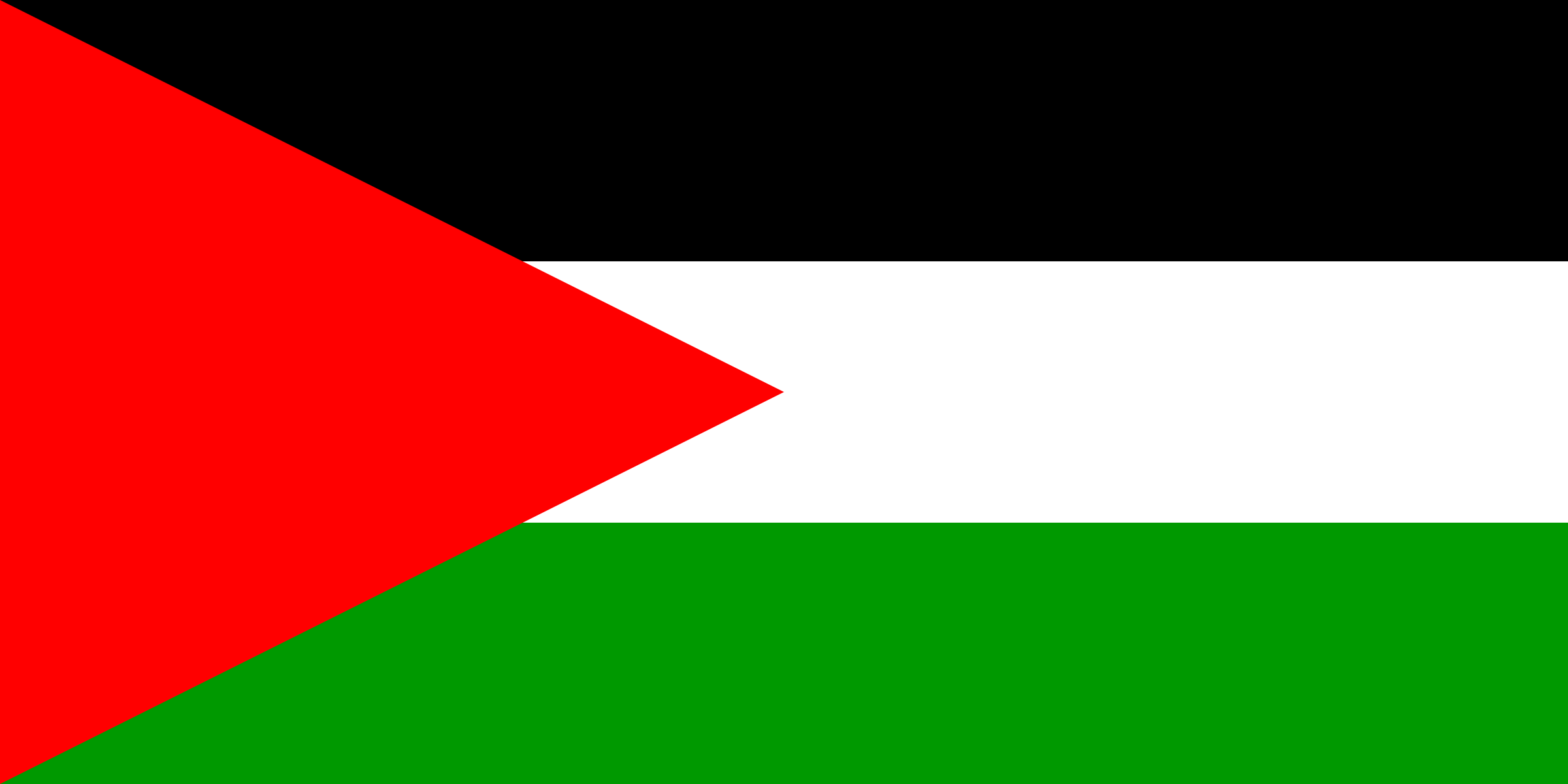 Flag of Palestine by Anonymous
