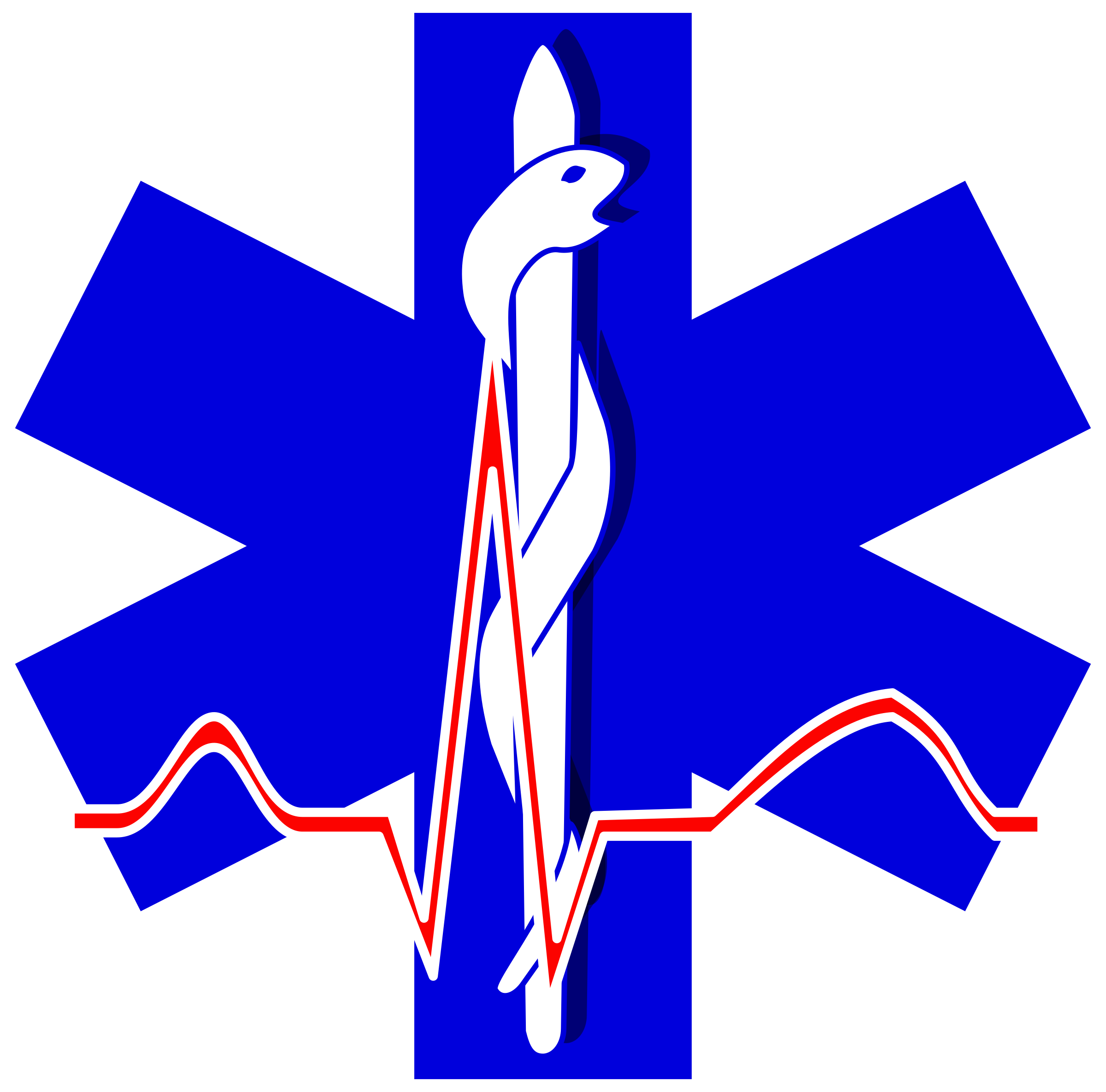 paramedic cross by Anonymous