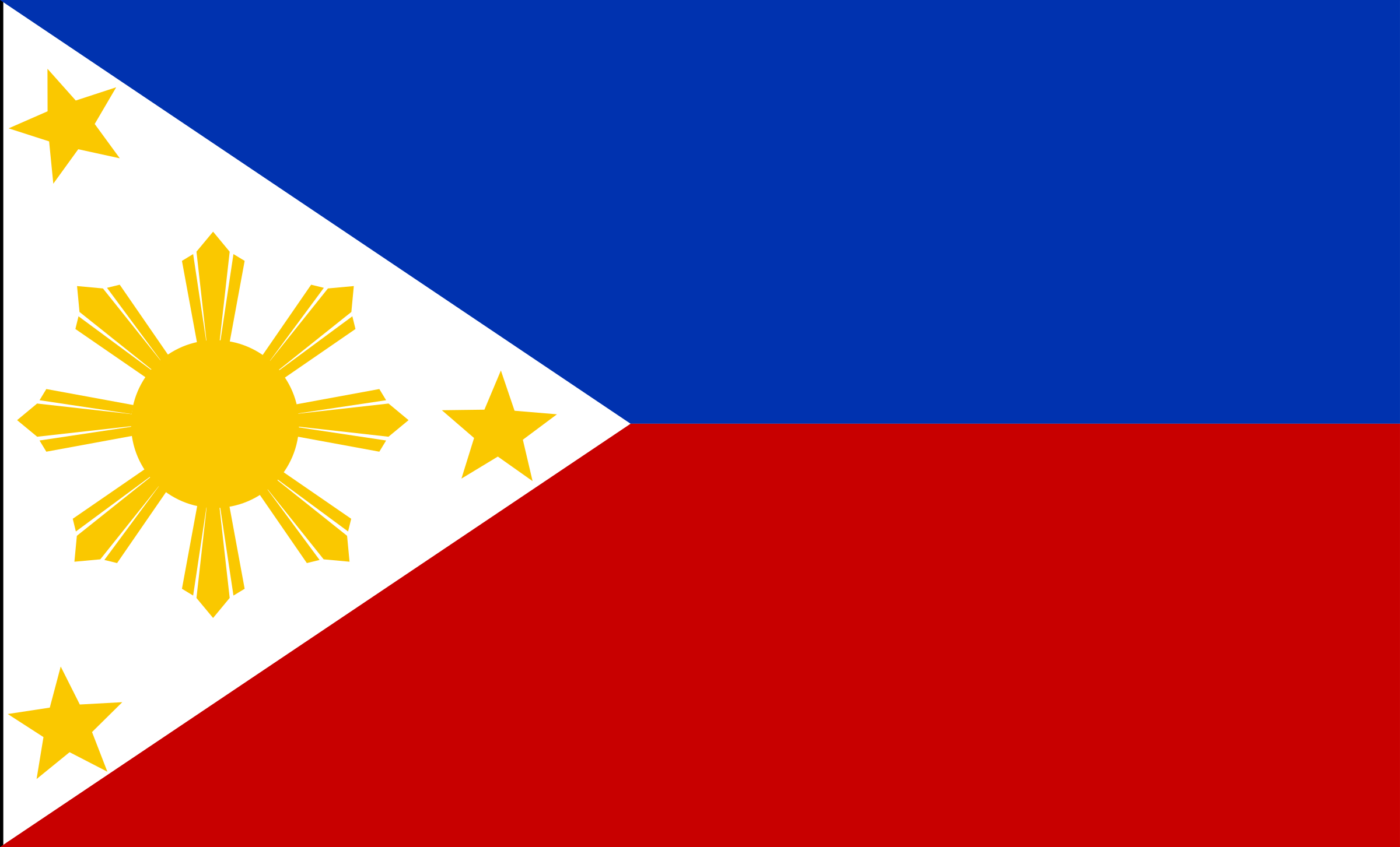 Flag of the Philippines by Anonymous