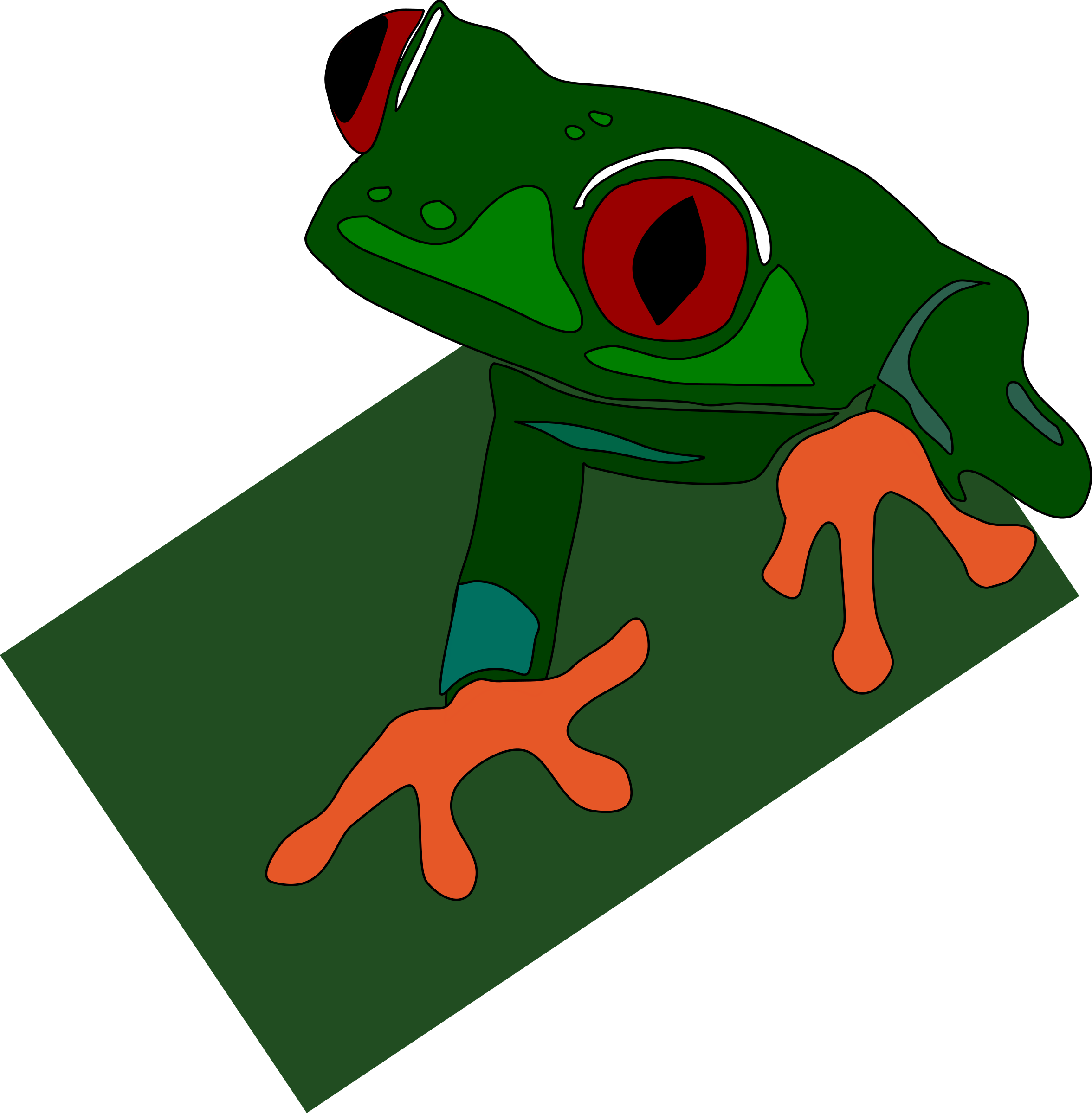 red-eyed frog by Anonymous