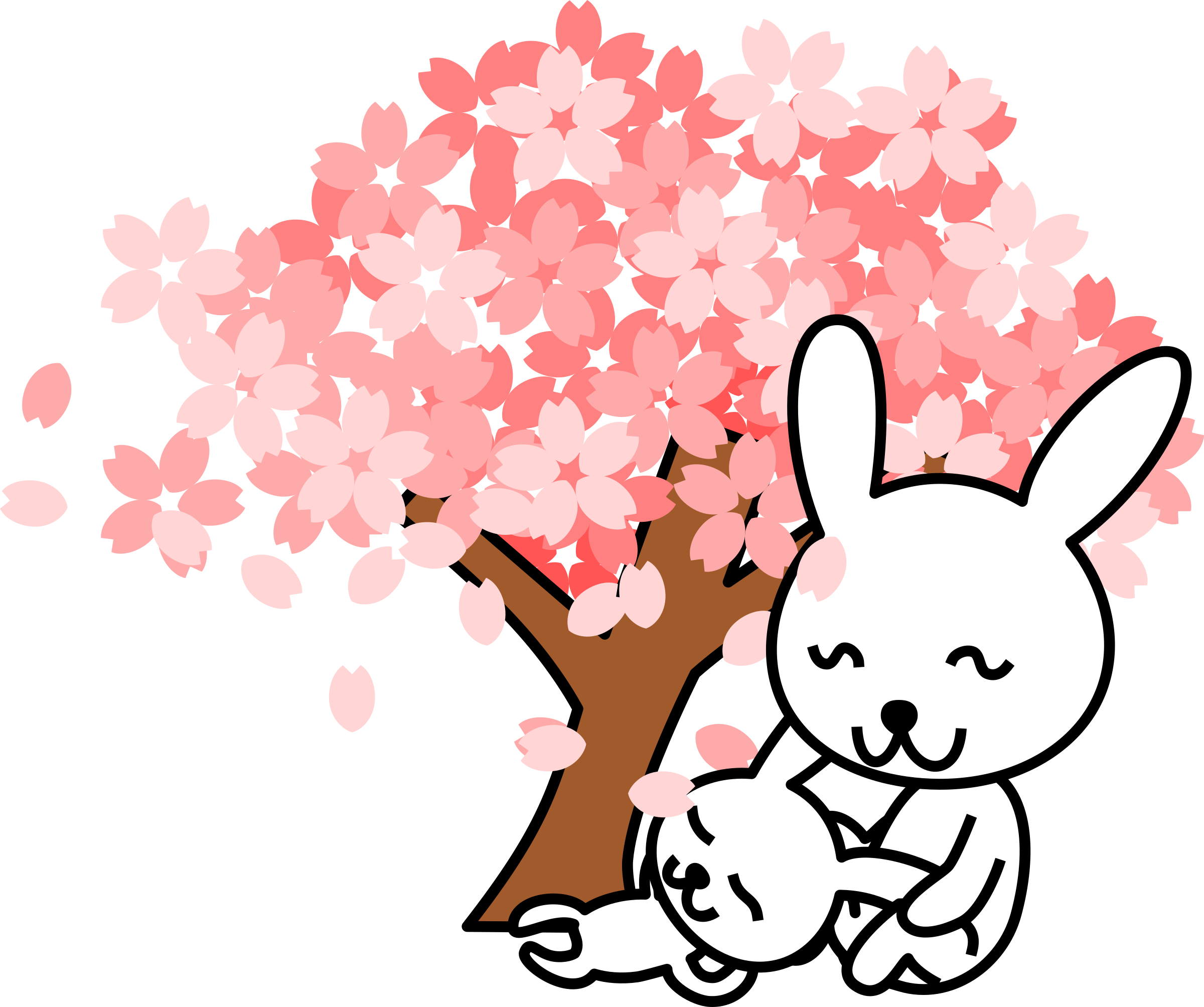 cherry blossoms rabbit by shu