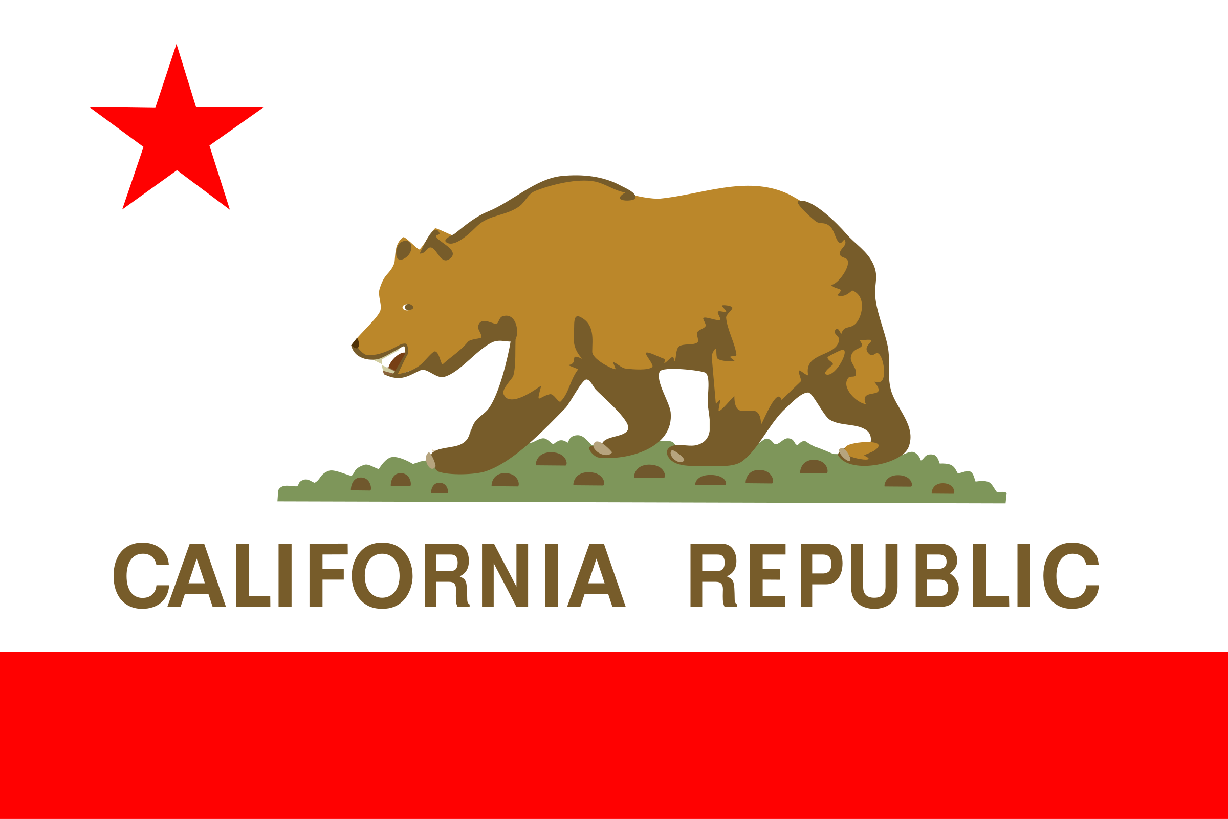 Flag of the state of California by Anonymous