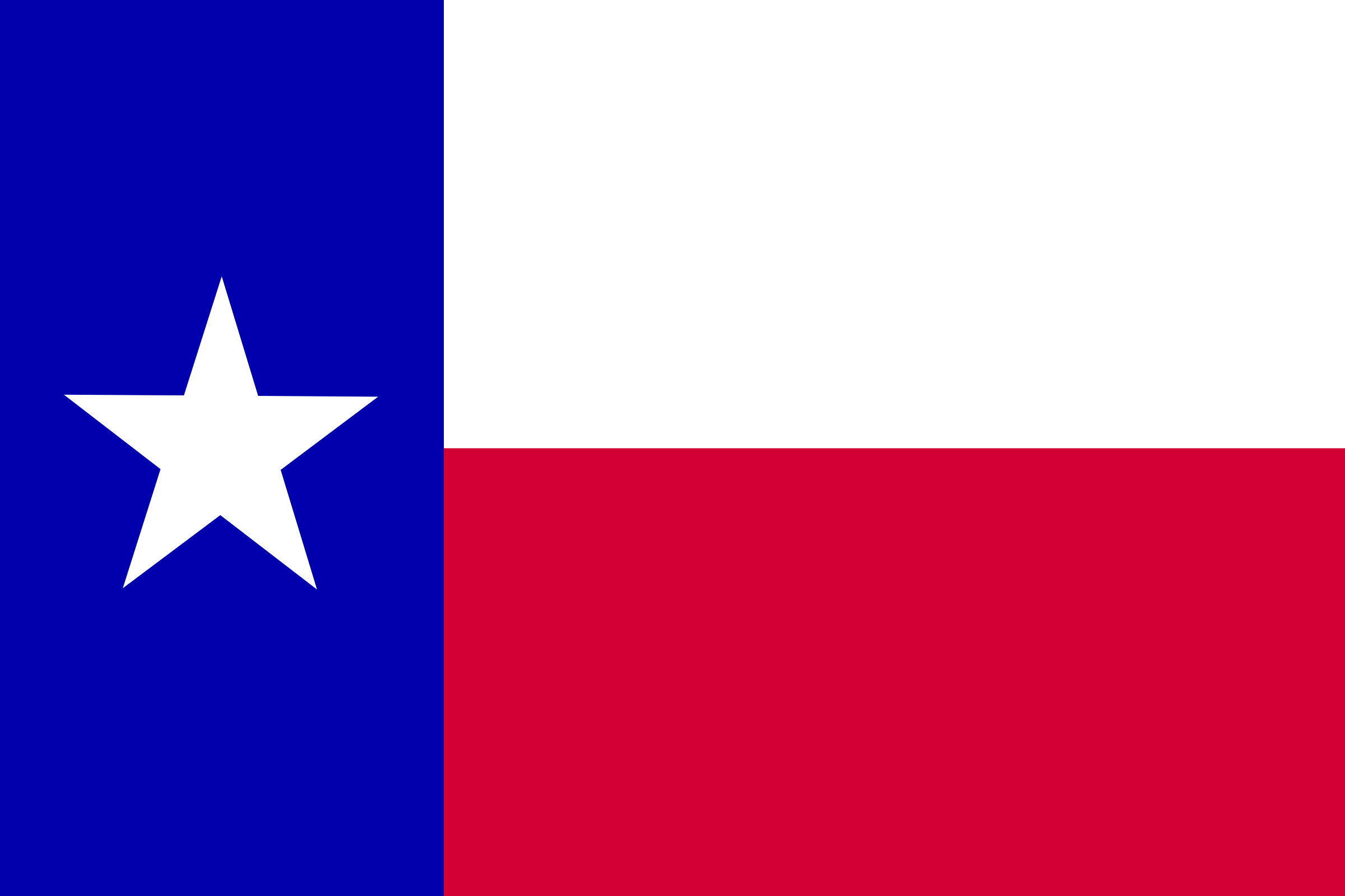 Flag of the state of Texas by Anonymous