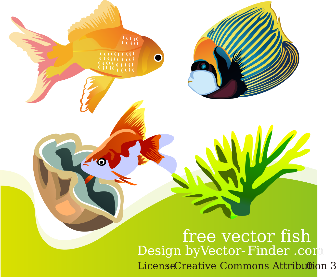 Free Vector Fish by vector-finder