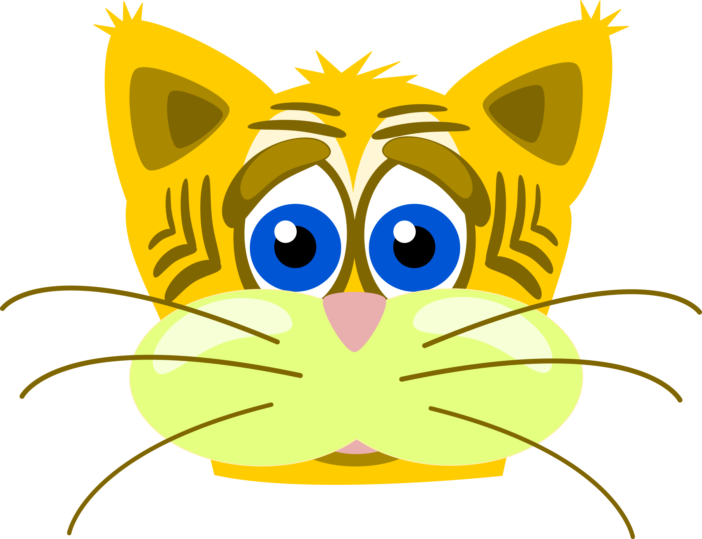 Sad tiger cat by PeterM