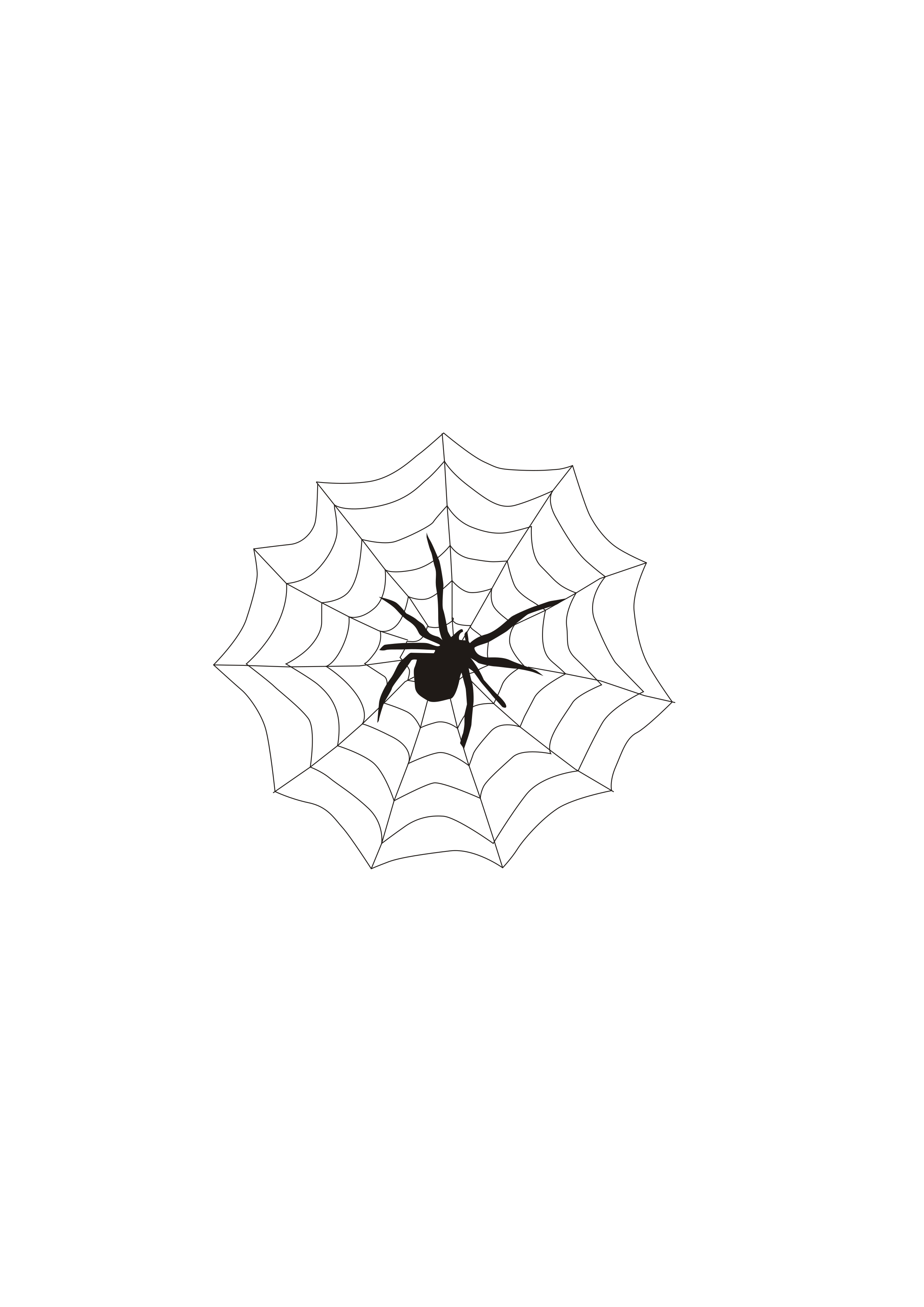 Spider & web by clipartbuz