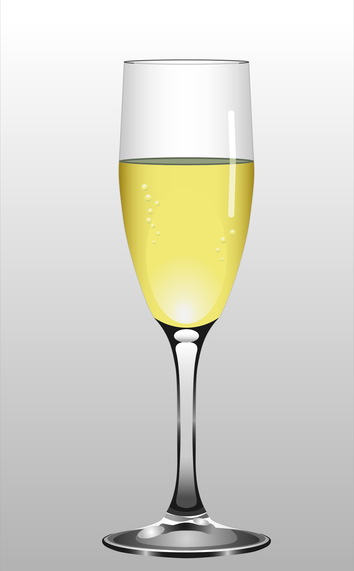 Glass of Champagne by Muga