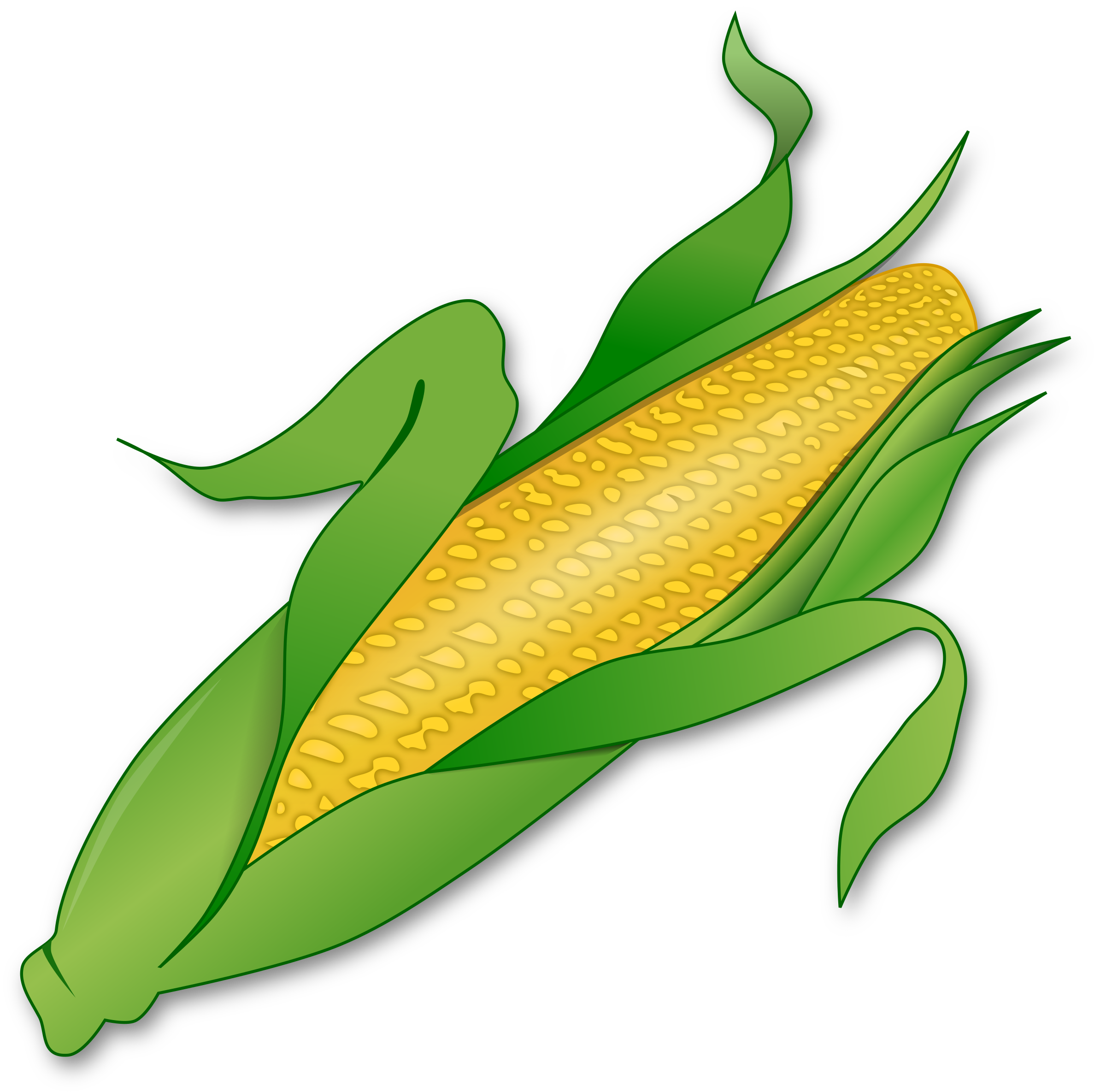 Corn by gnokii
