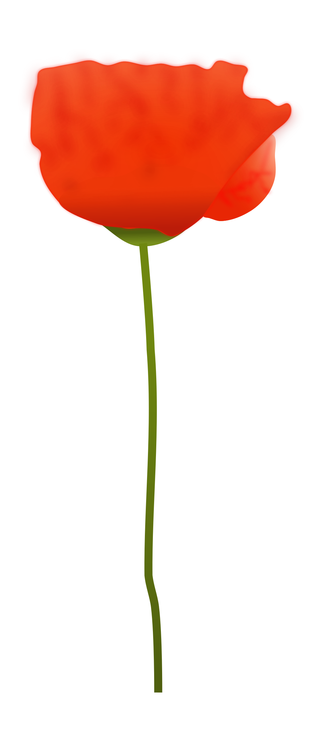 Clipart Poppy Flower