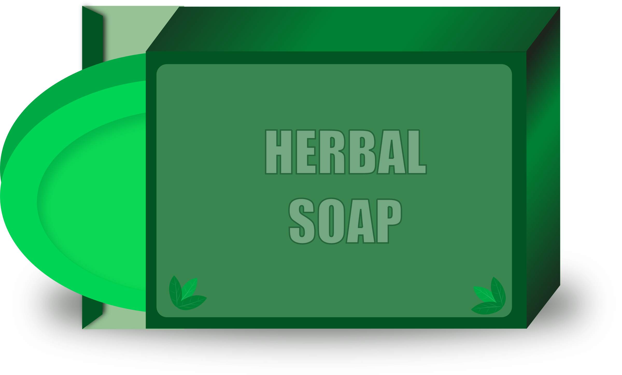 Herbal Soap by gsagri04