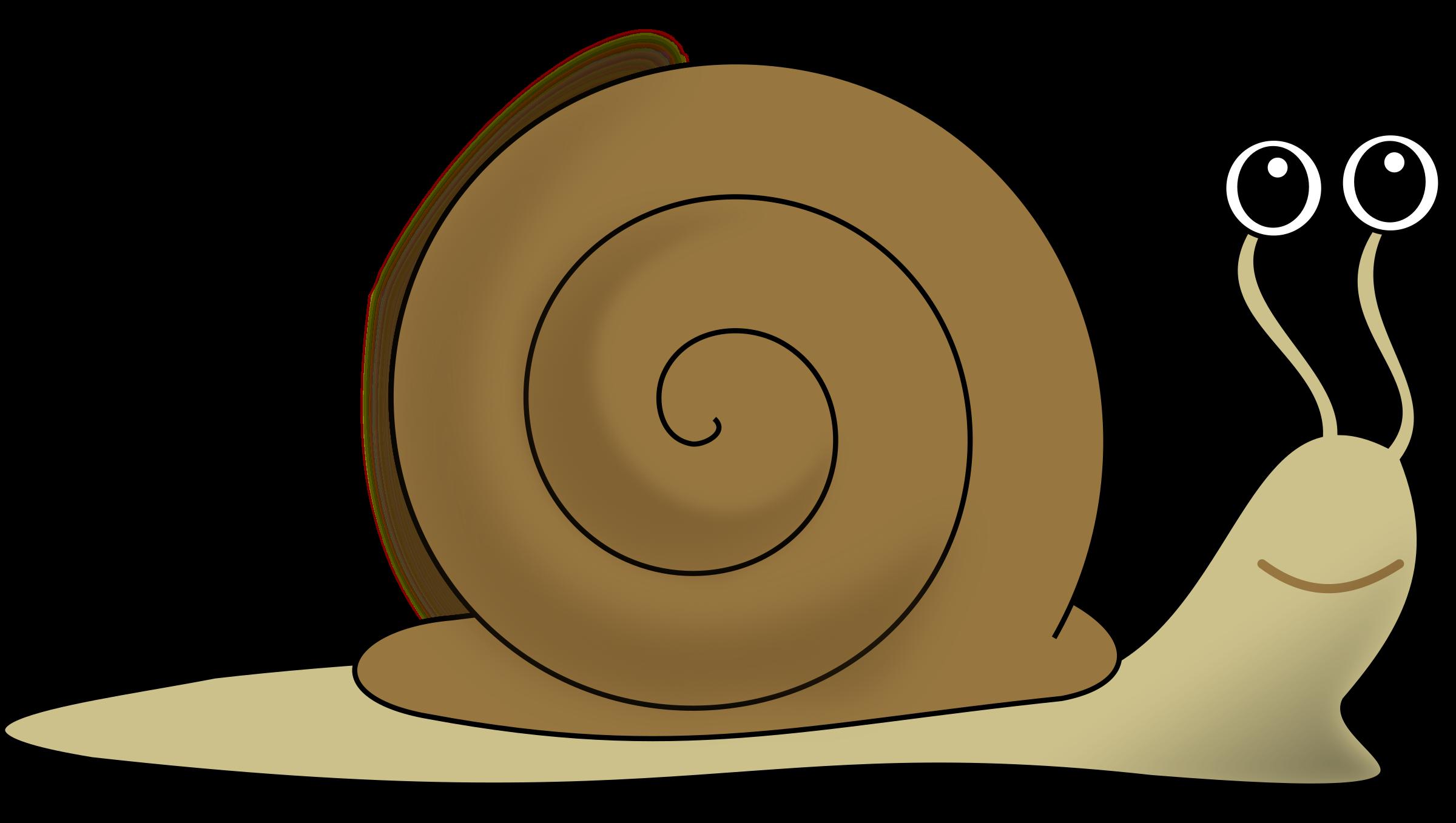 Clipart snail escargot decroissance - Clipart escargot ...