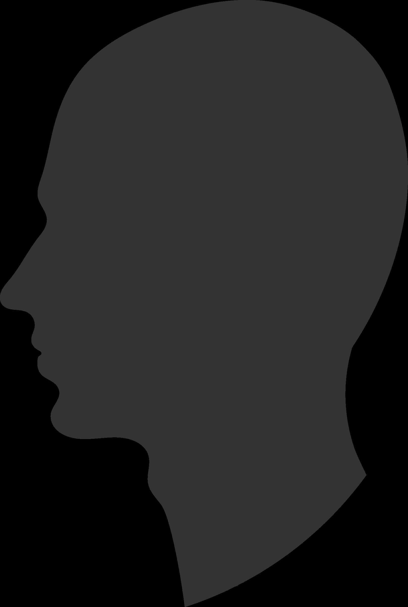 Head profile   1615 x 2400 png 23kB
