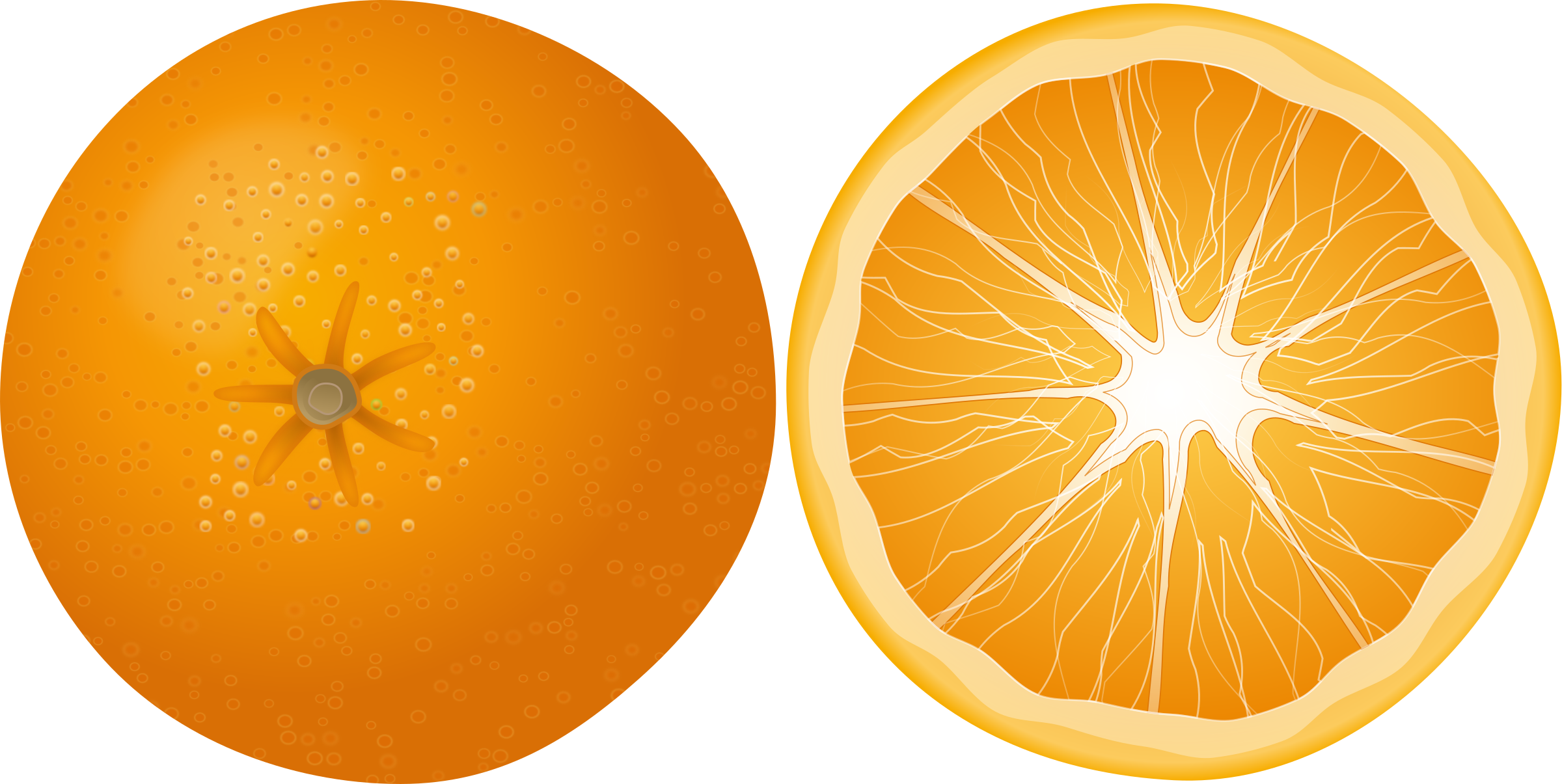 Orange Apelsinas by Keistutis
