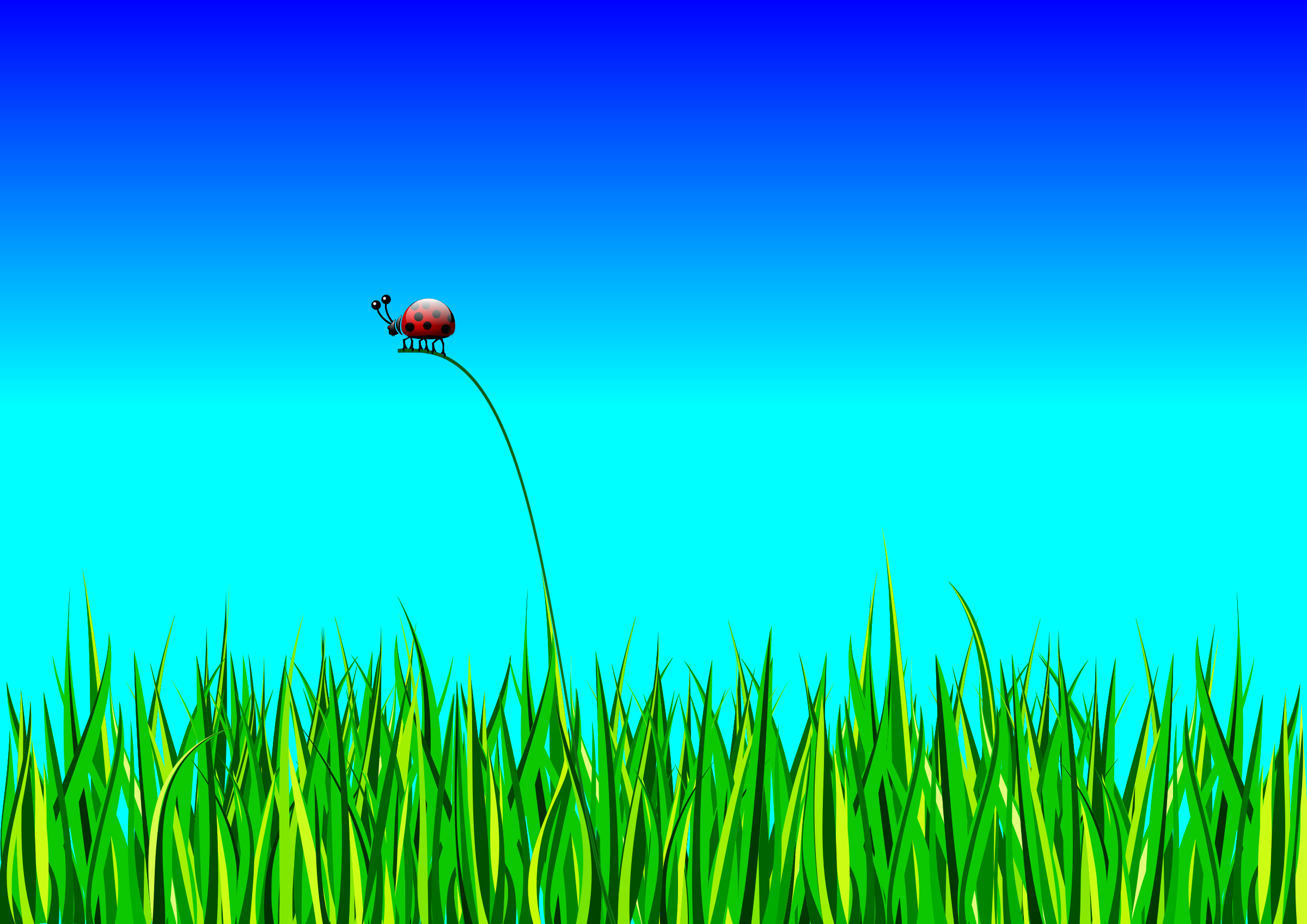 Grass with bug by roshellin
