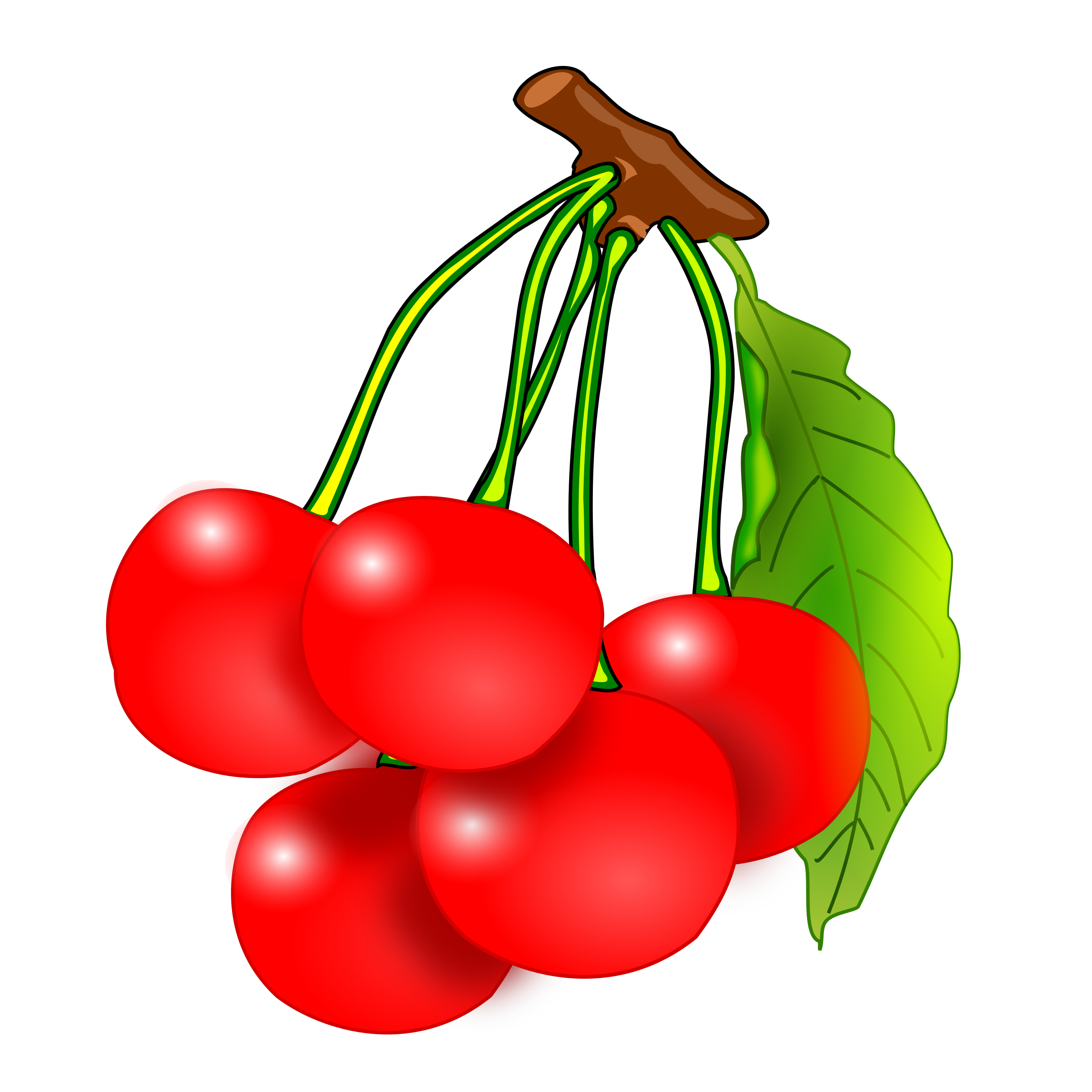Cherries by mrallowski