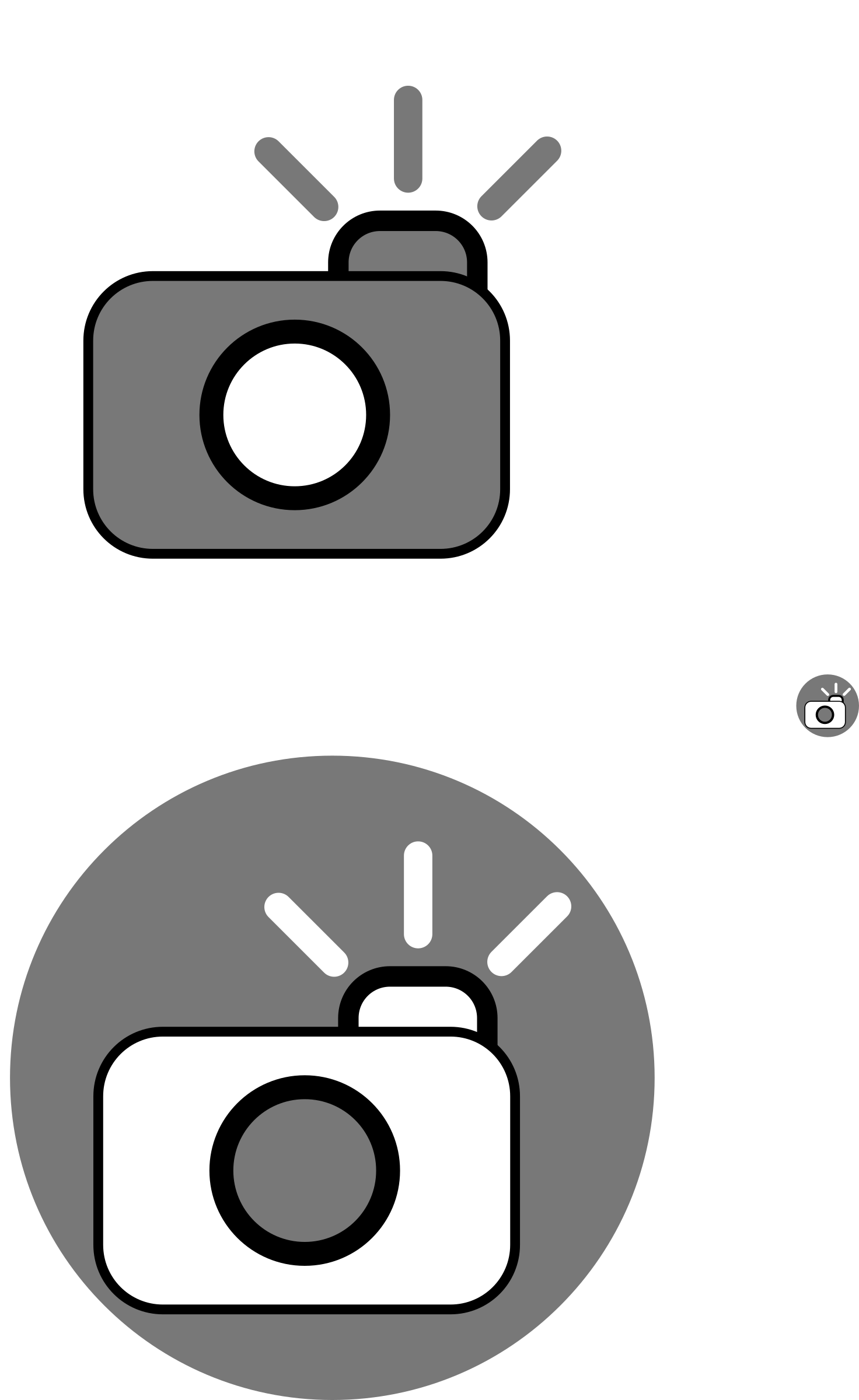 Camera icons by txapelgorri