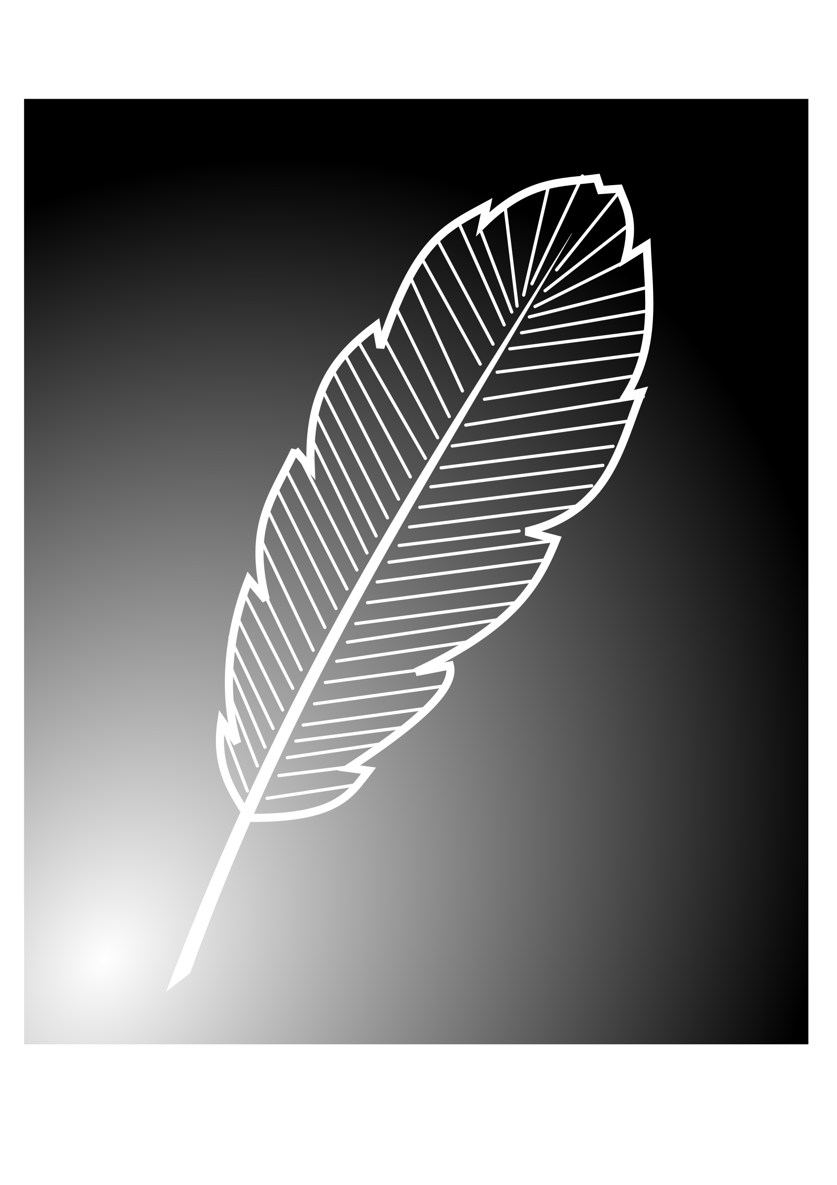 feather by kolbasun