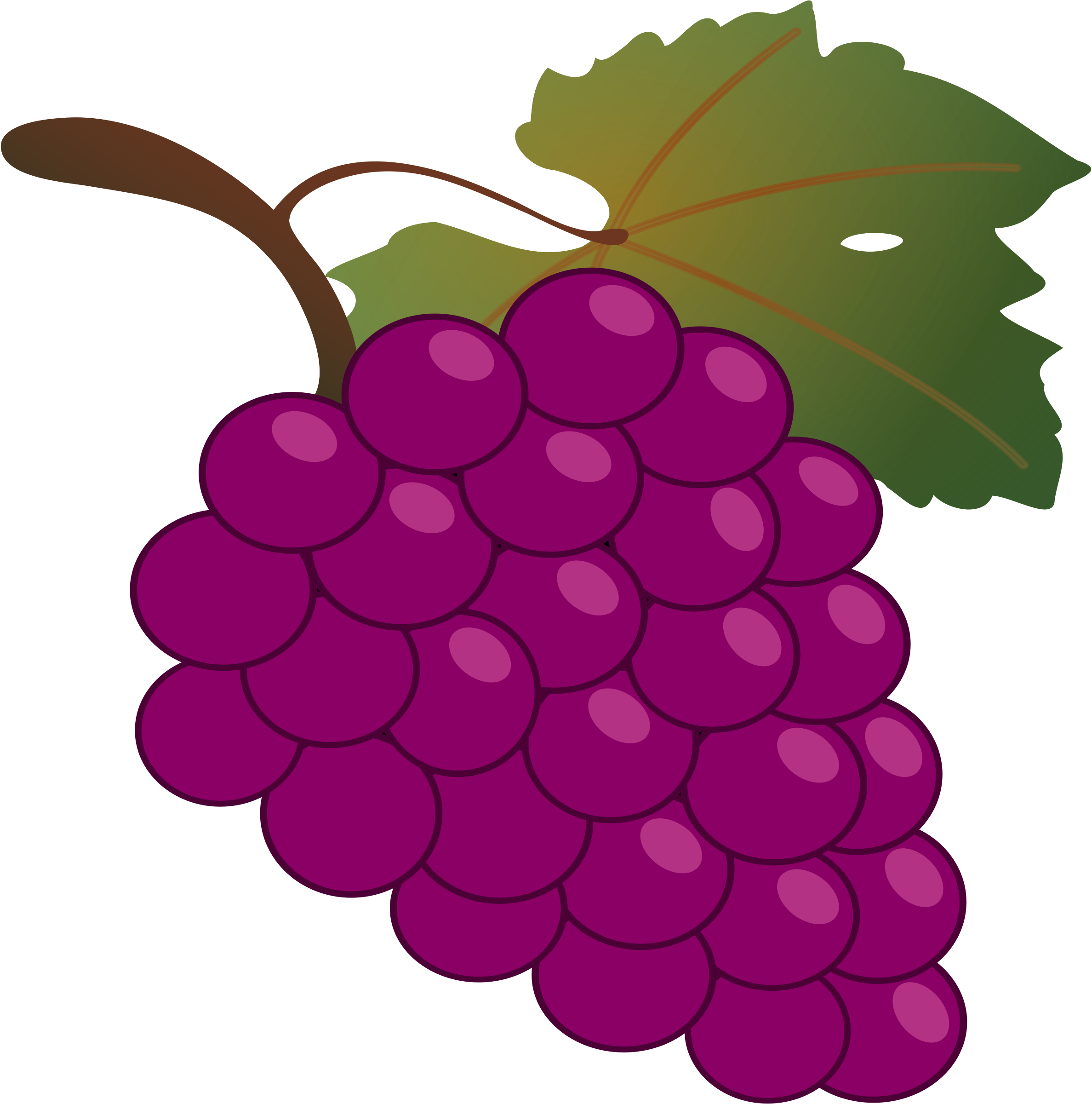 grape by jean_victor_balin