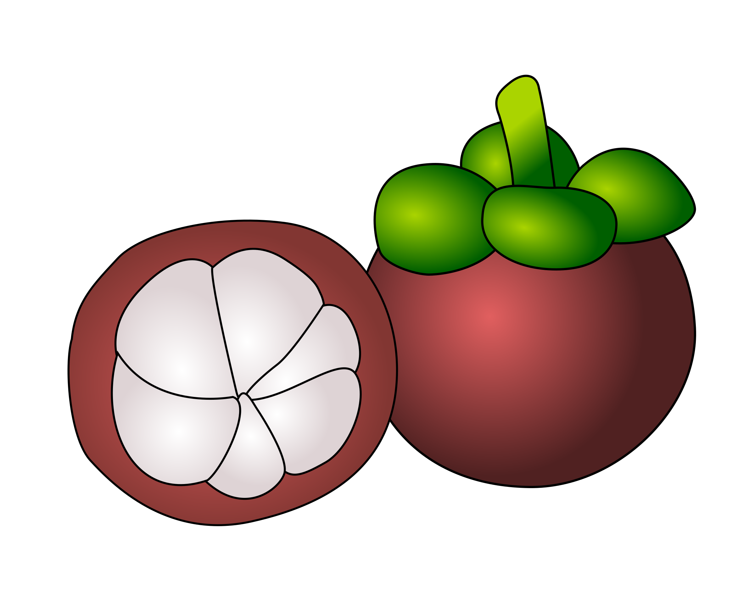 mangosteen by ycteo