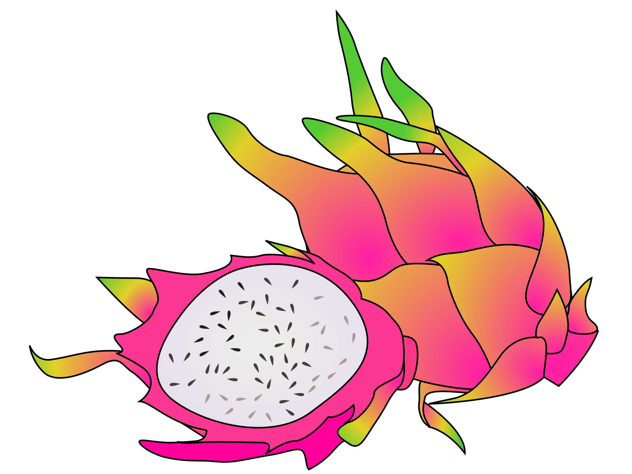 dragon fruit by ycteo