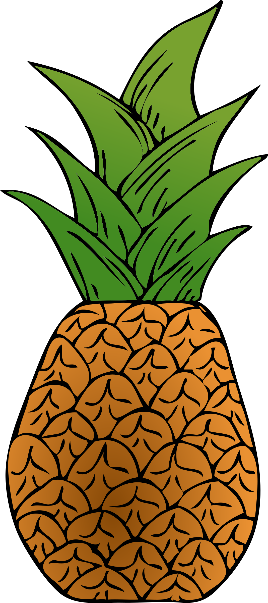 Alternative Pineapple by qubodup