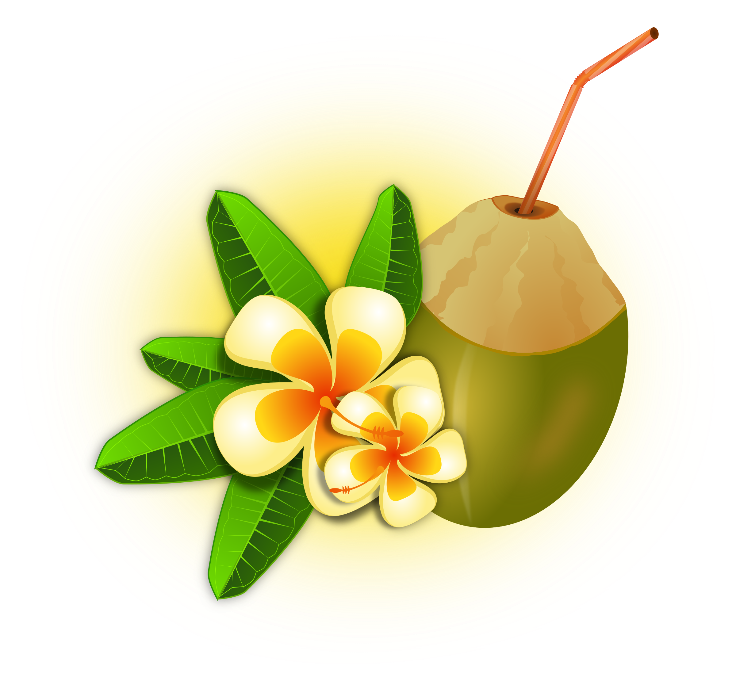 Coconut Drink Clip Art Clipart - coconut cocktail
