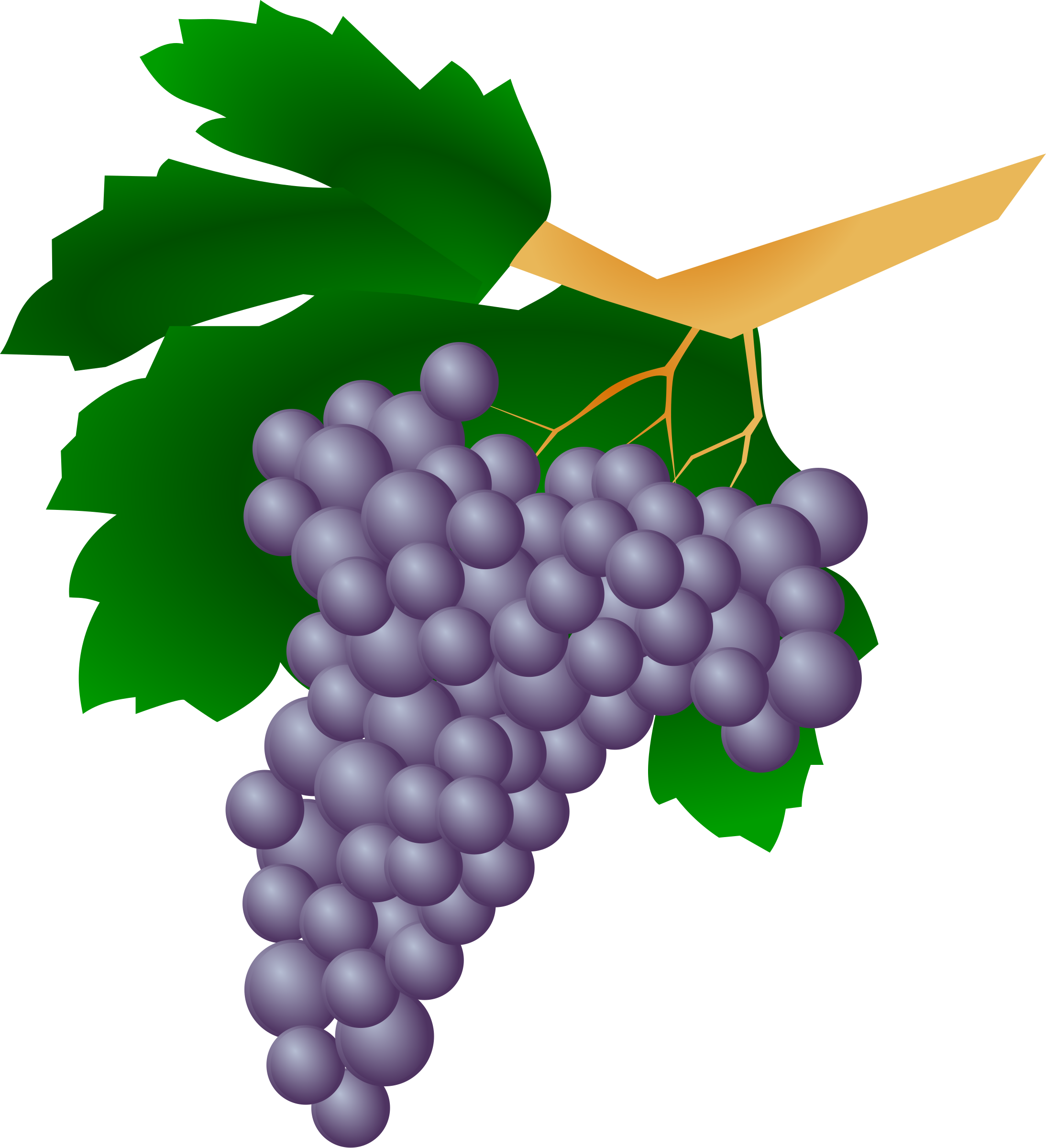 Grapes - Raisin by cyberscooty