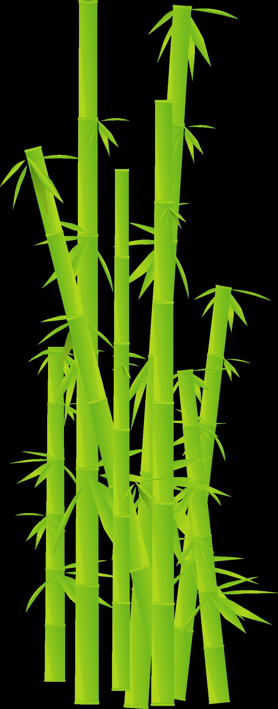 Clipart bamboo