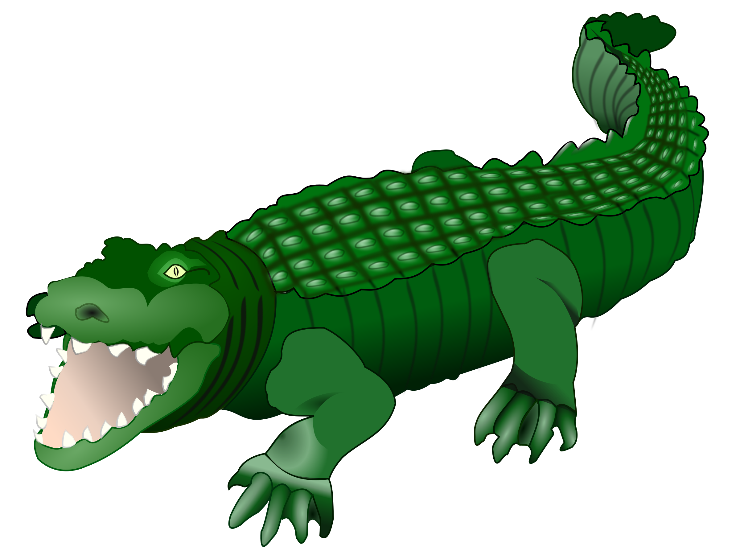 Crocodile by frankes