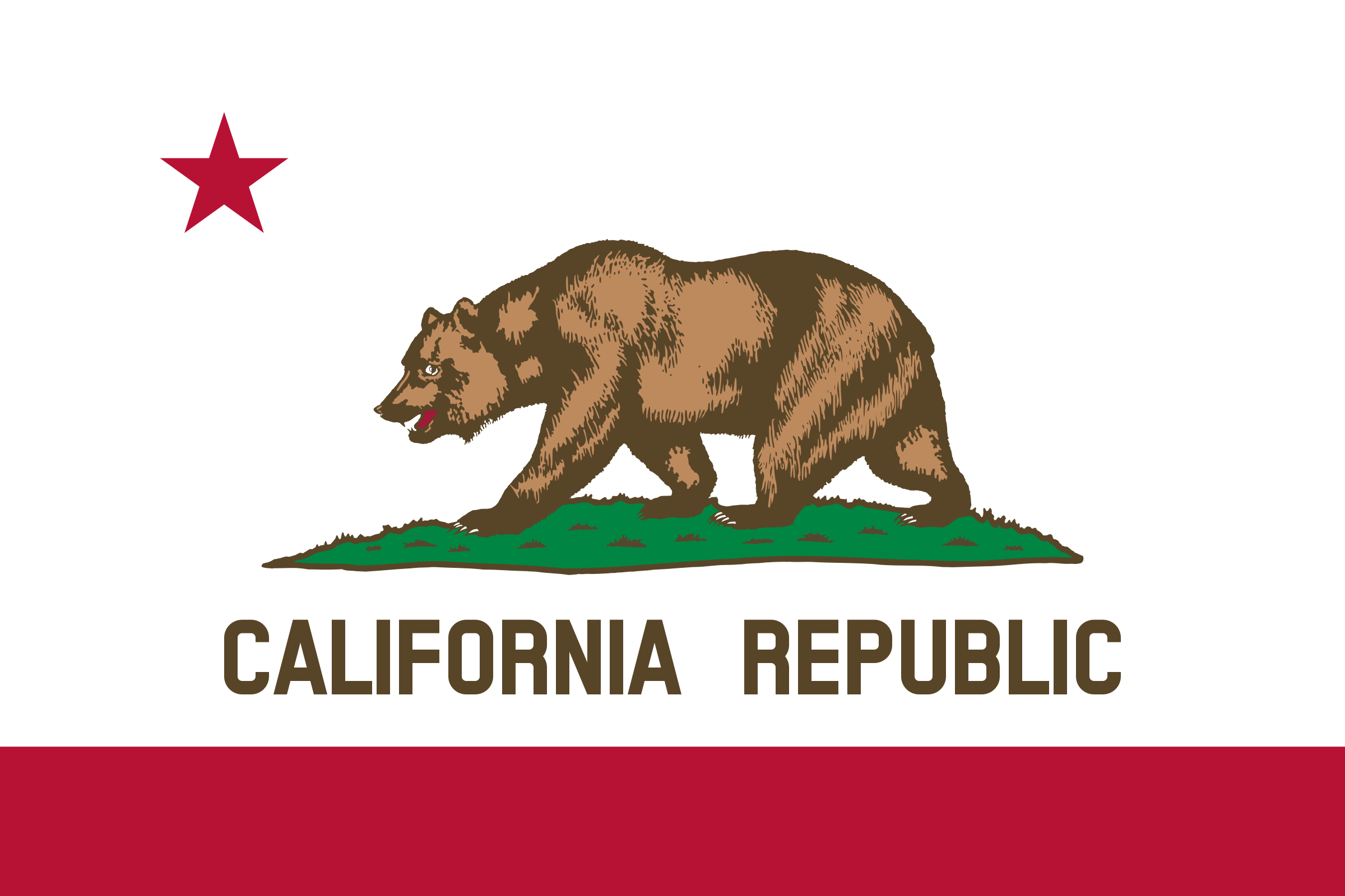 Flag of California  by DevinCook