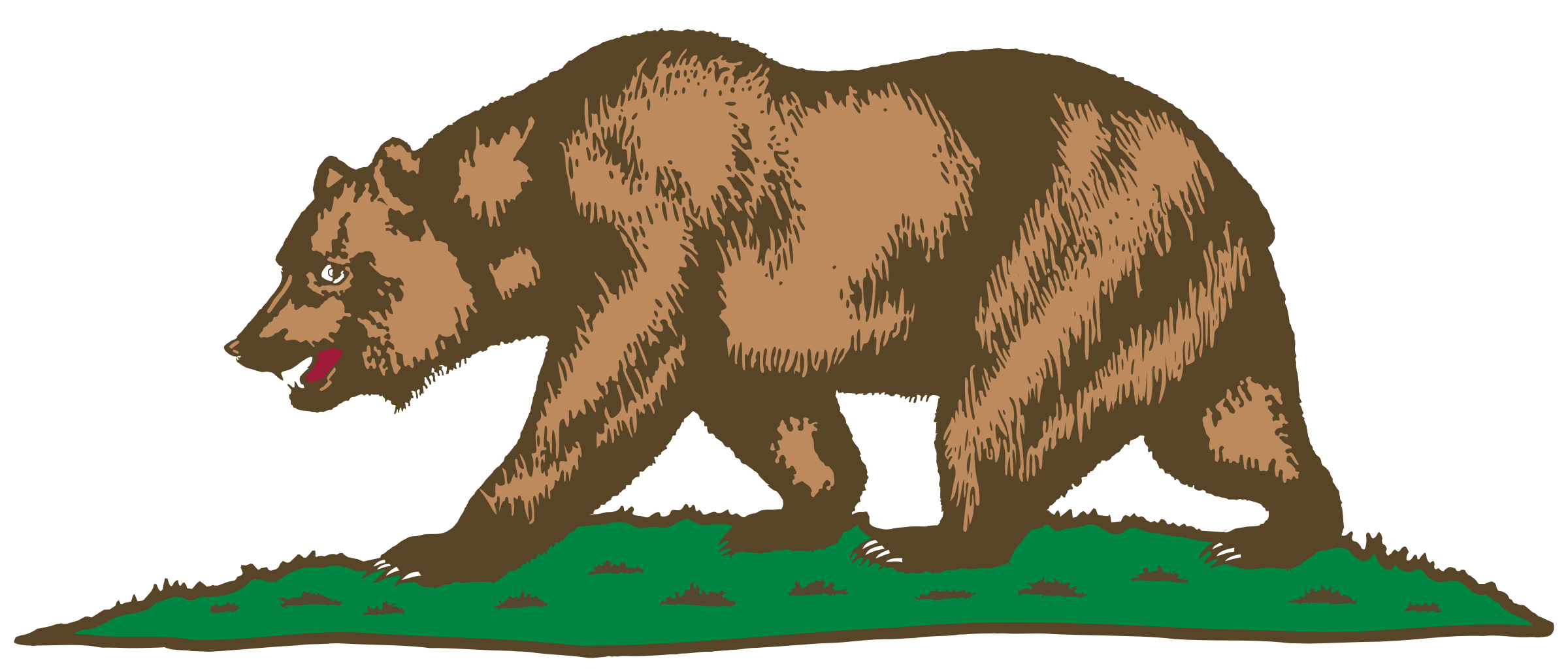 Flag of California - Bear and Plot  by DevinCook