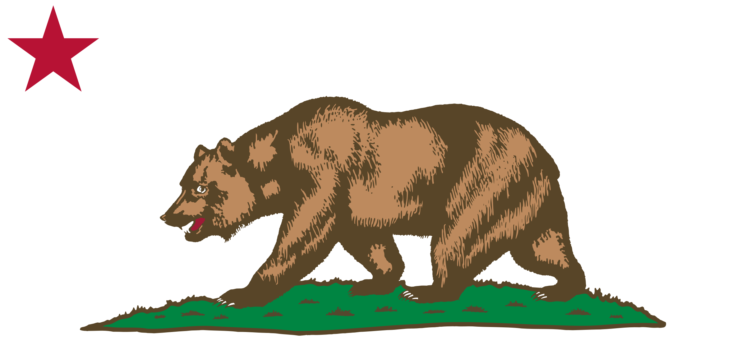 Flag of California - Bear, Plot and Star  by DevinCook
