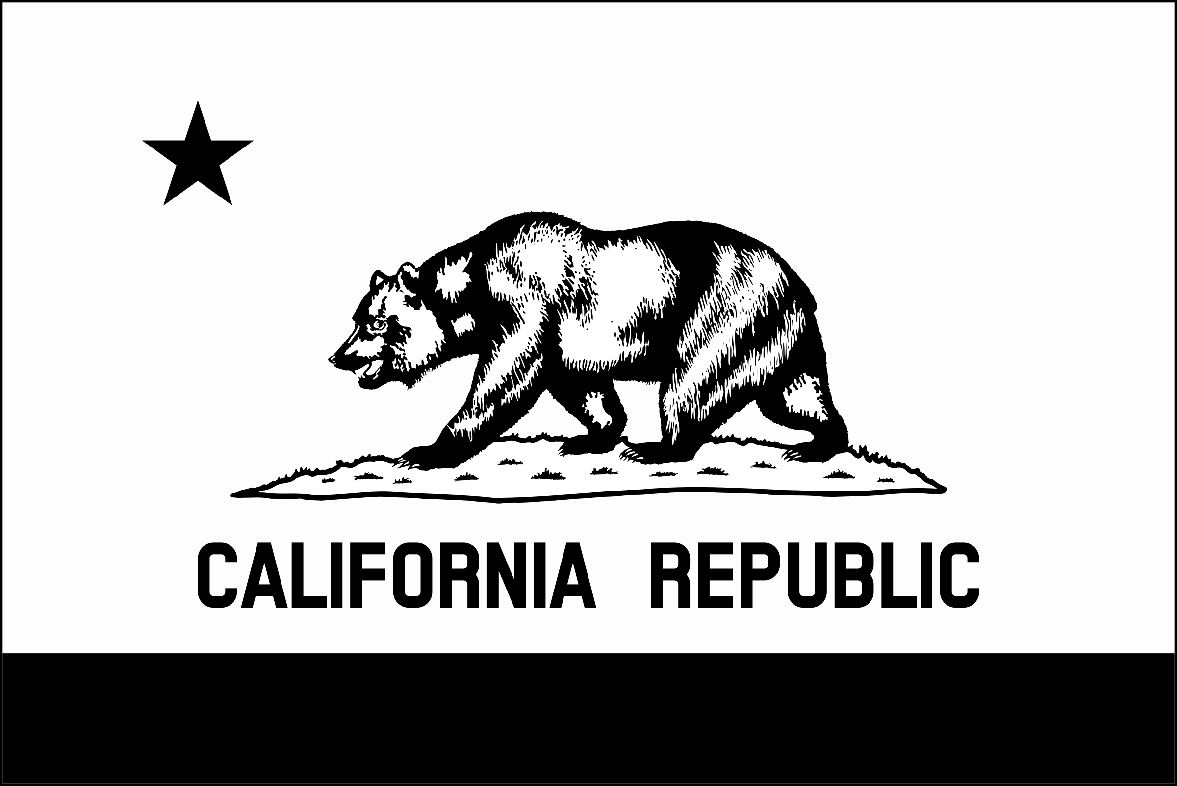 Flag of California (thin border, monochrome)  by DevinCook
