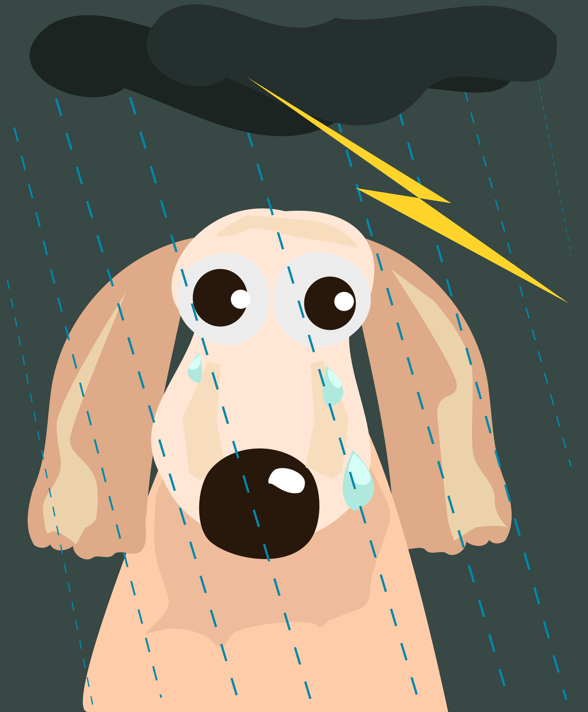 sad dog in the rain by OlKu