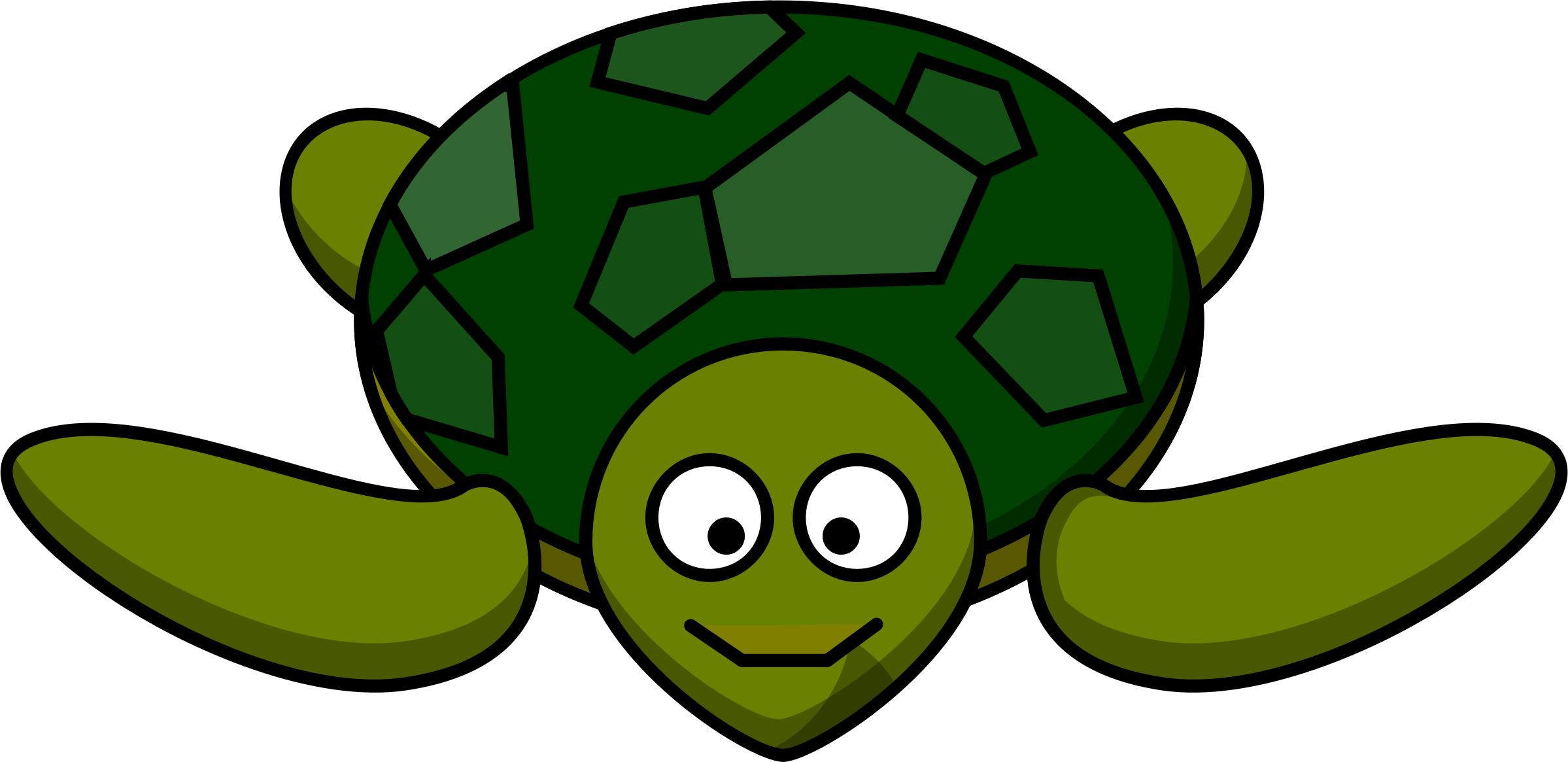 smiling turtle by ruthirsty