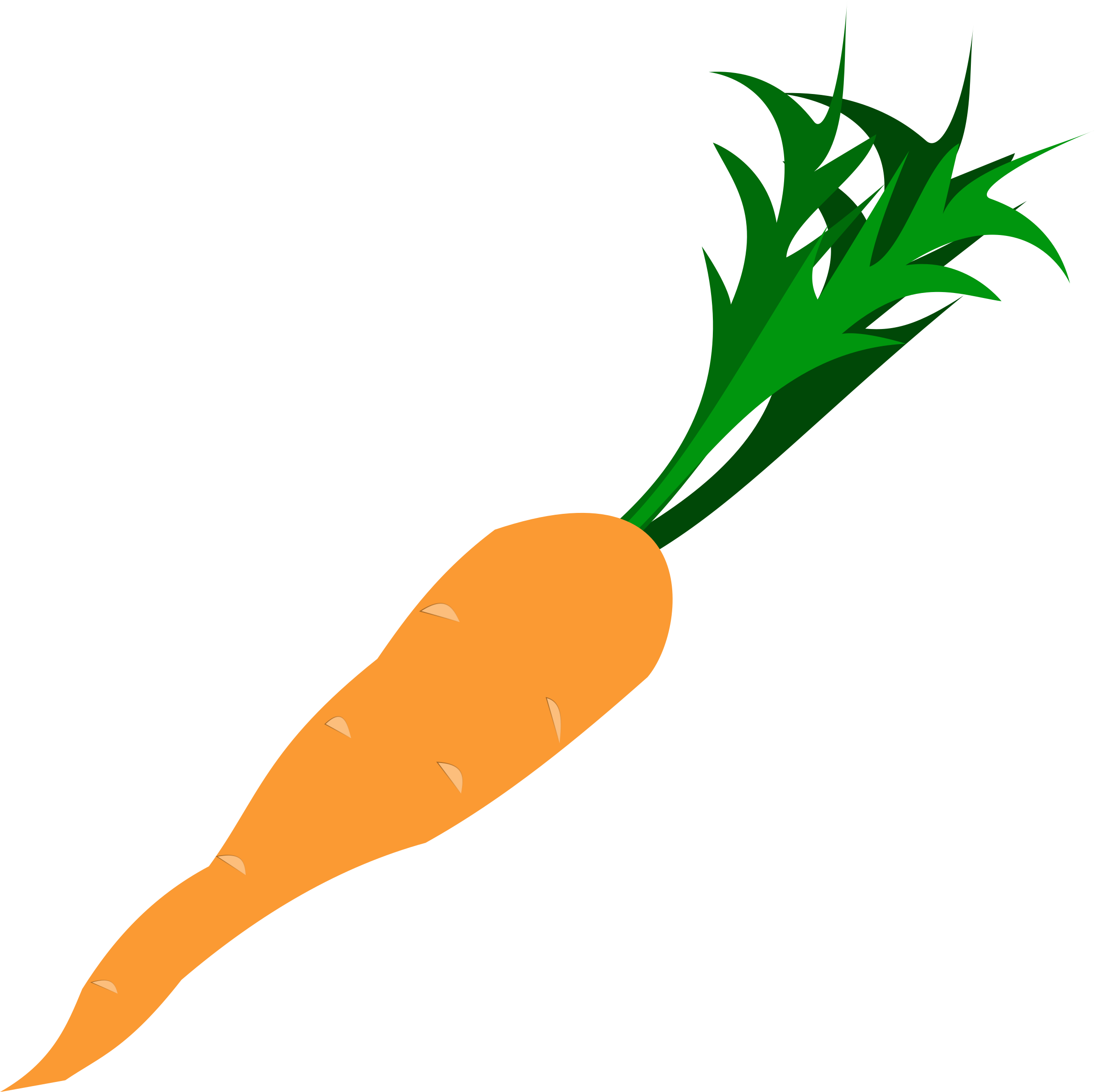 Carrot by bravebug