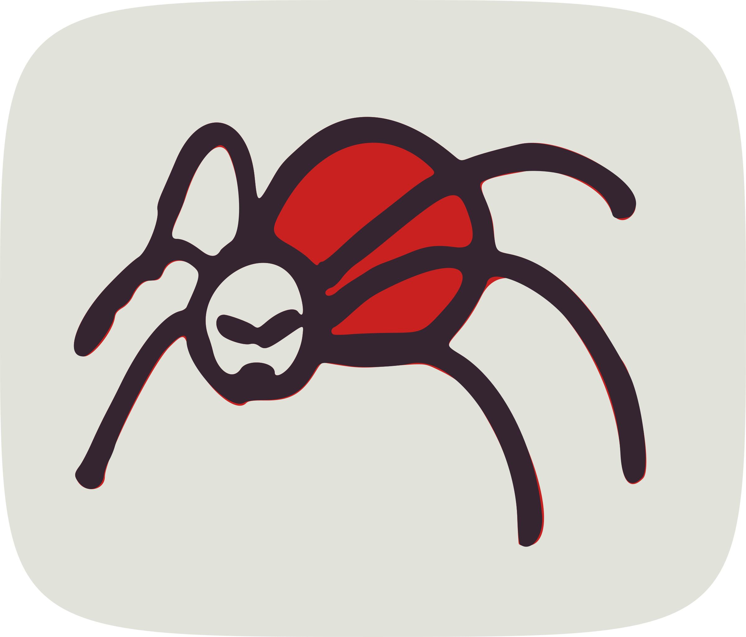 Spider by global quiz