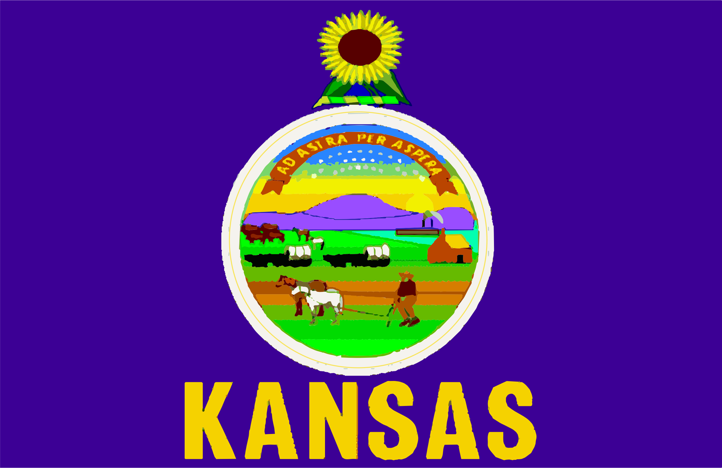 Flag of State of Kansas by Anonymous
