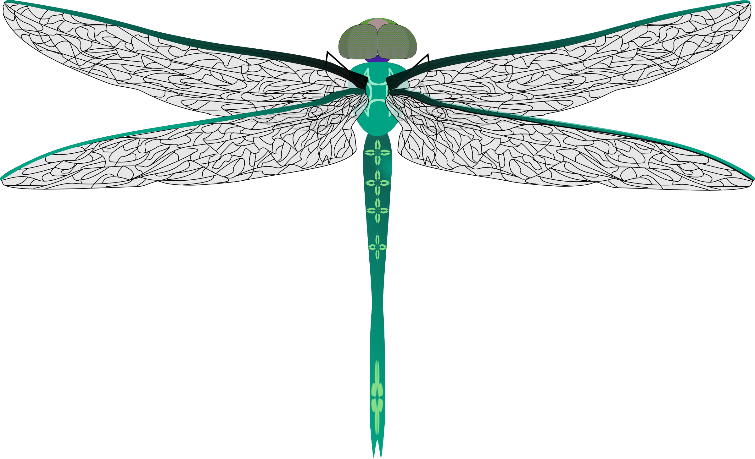 teal dragonfly by Dfly