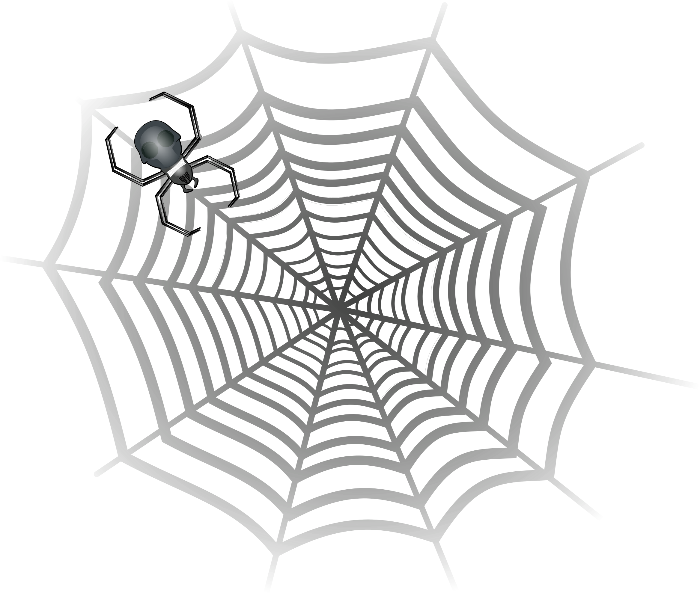 spider web by drunken_duck