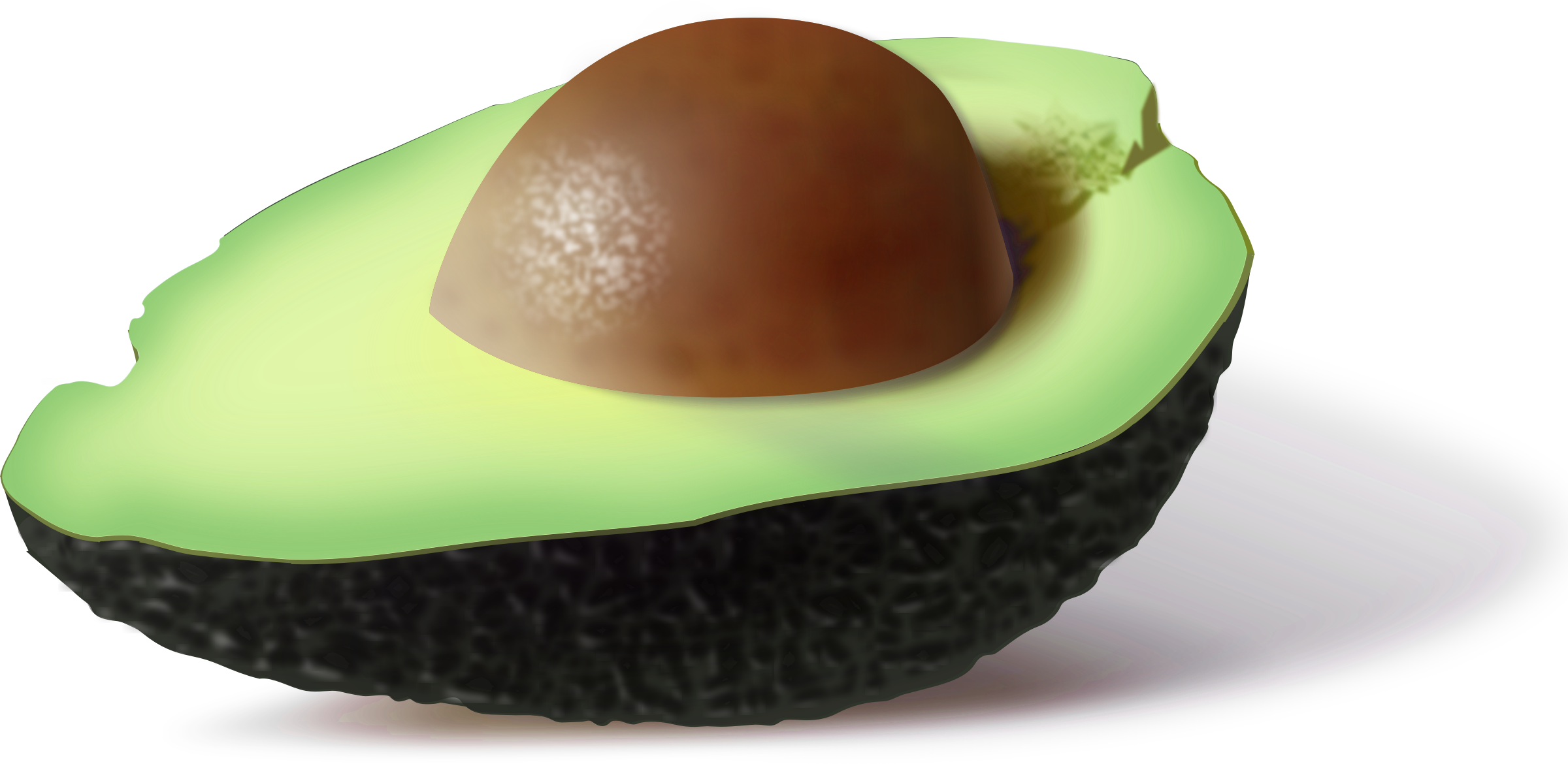 Half of an Avocado by pipo